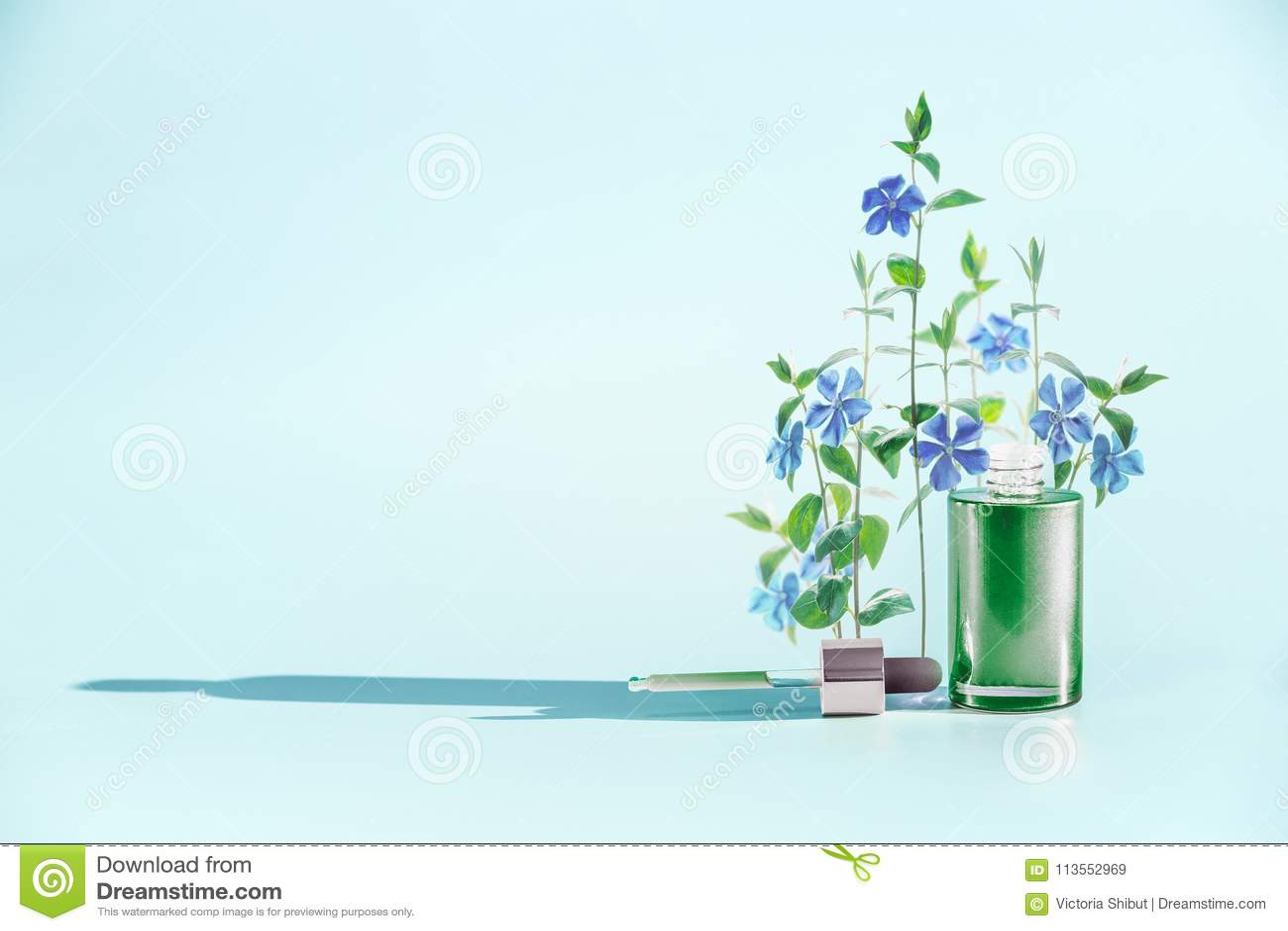 Cosméticos herbarios del cuidado de piel y concepto de la belleza Botella facial verde del suero o de aceite con el dropper o la