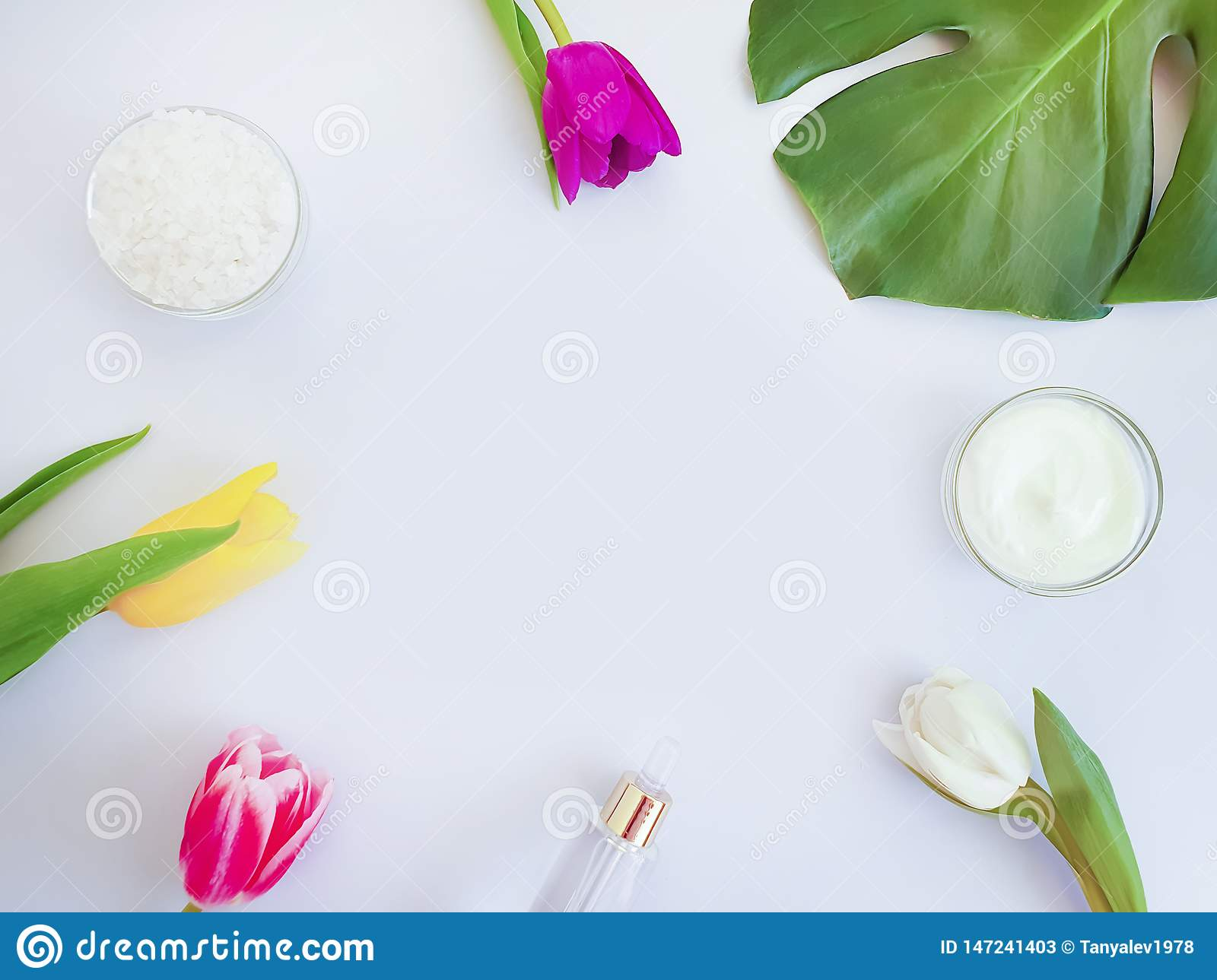 Cosmetic cream essence, flower tulip, natural springtime product monstera leaf salt on a colored background