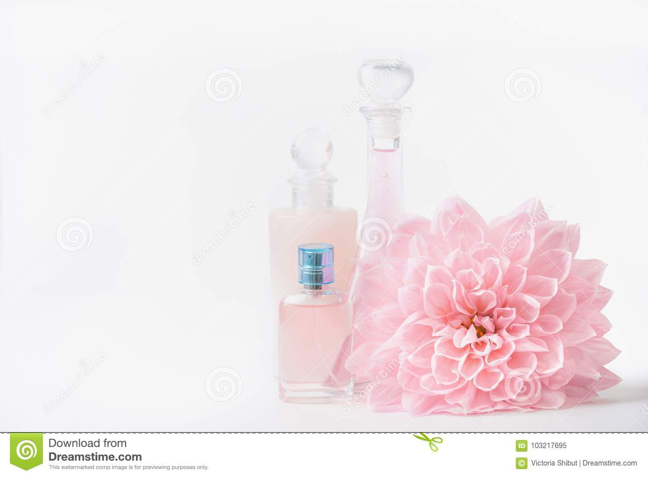 Cosmetic and perfume bottles with pink pale flower on white background, front view. Beauty and skin care