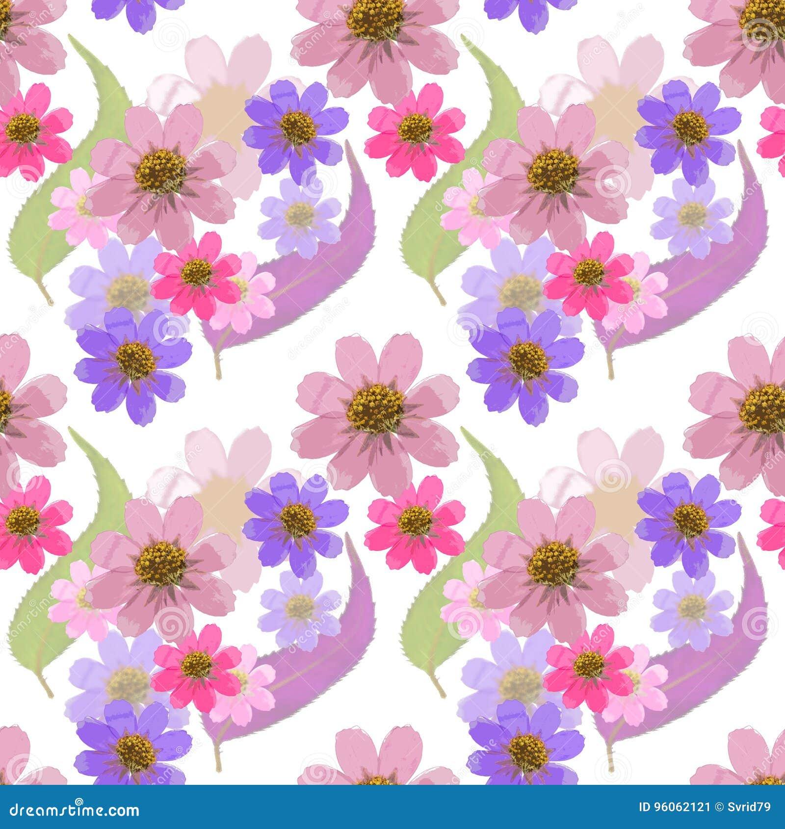 Cosmos Texture sans couture de modèle des fleurs Fond floral, vecteur