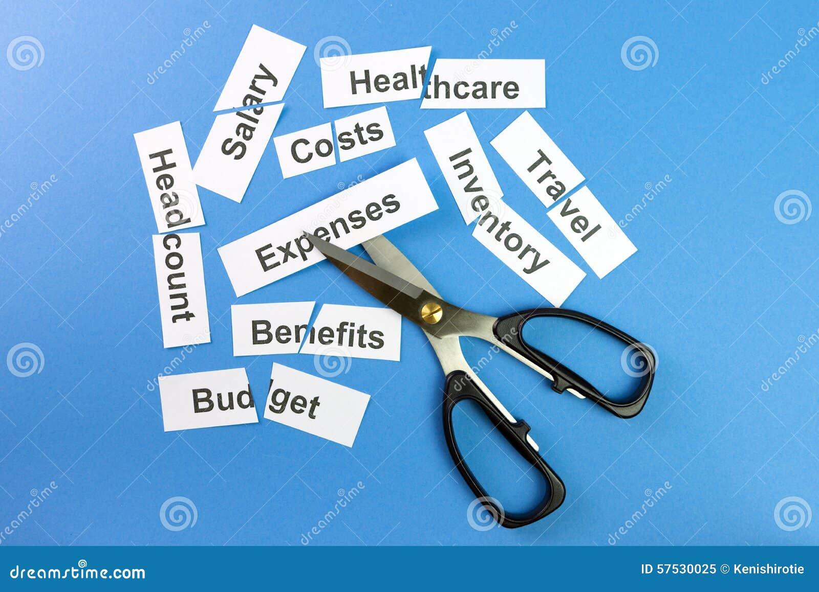 Cost Management & Cost Control Essay