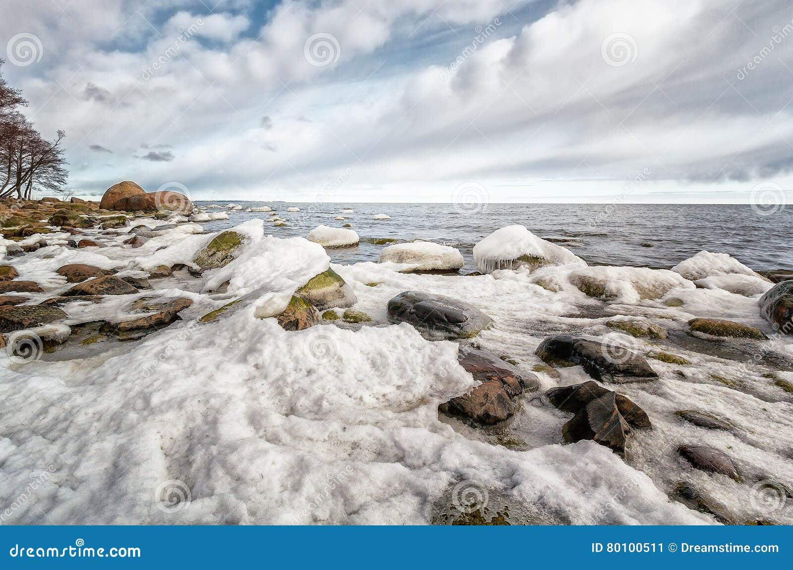 Costa estônia
