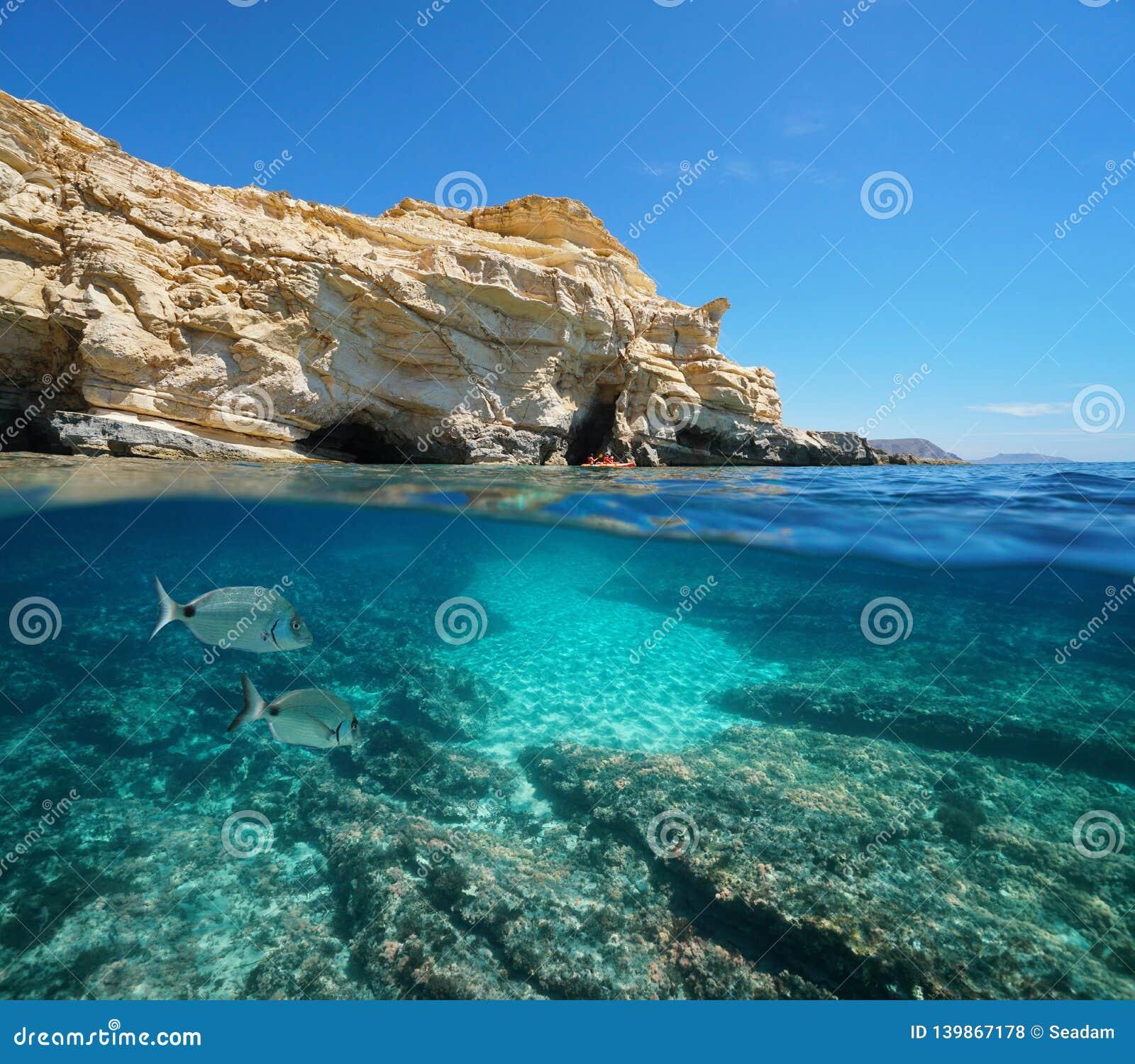 Costa rochosa da Espanha com peixes a Andaluzia subaquática