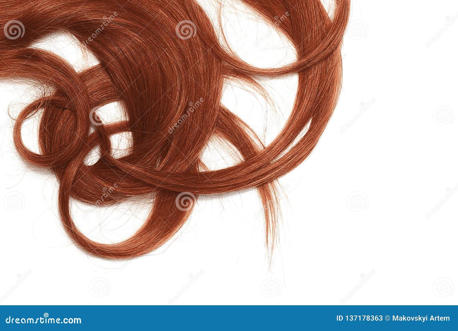 Costas de longo, torcidas, cabelo da hena isolado no fundo branco