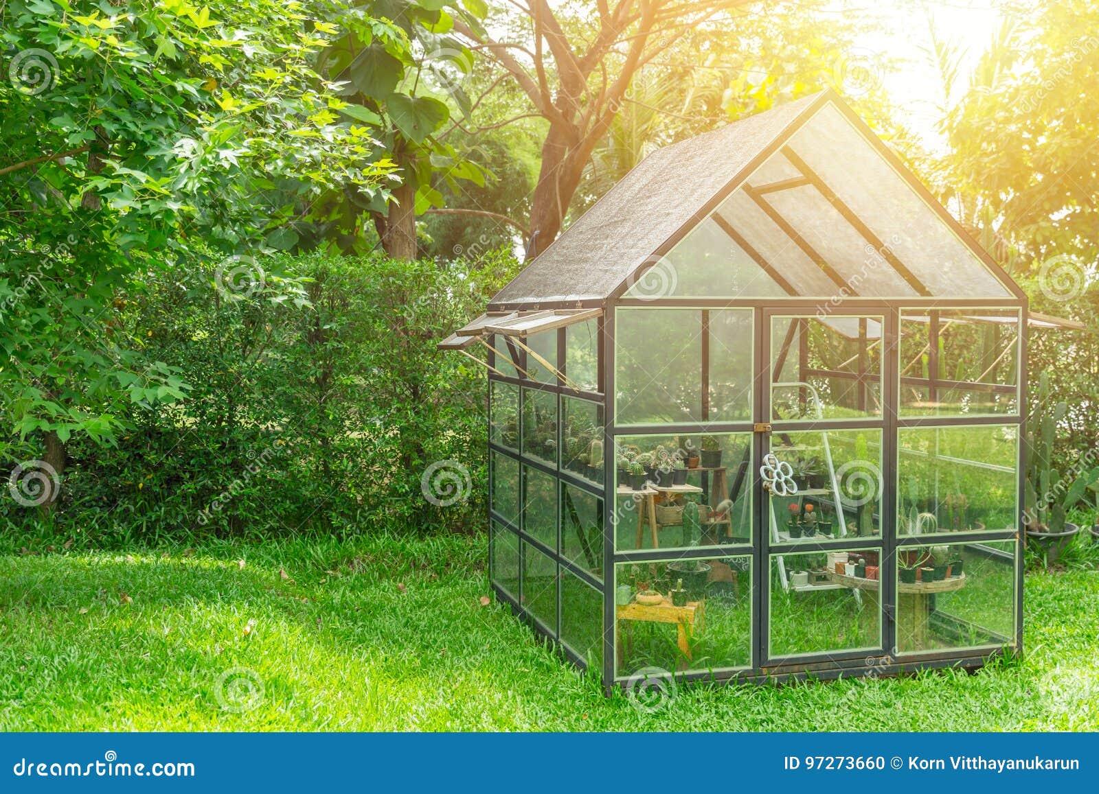 Costruzione del vetro trasparente della serra nel giardino domestico