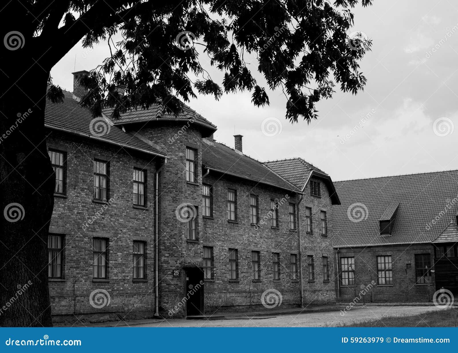 Costruzioni a Auschwitz