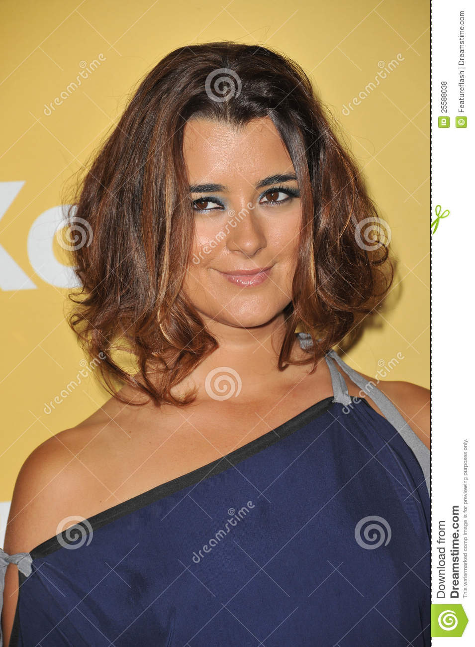 Cote de Pablo at the Women in Film 2012 Crystal + Lucy Awards at the