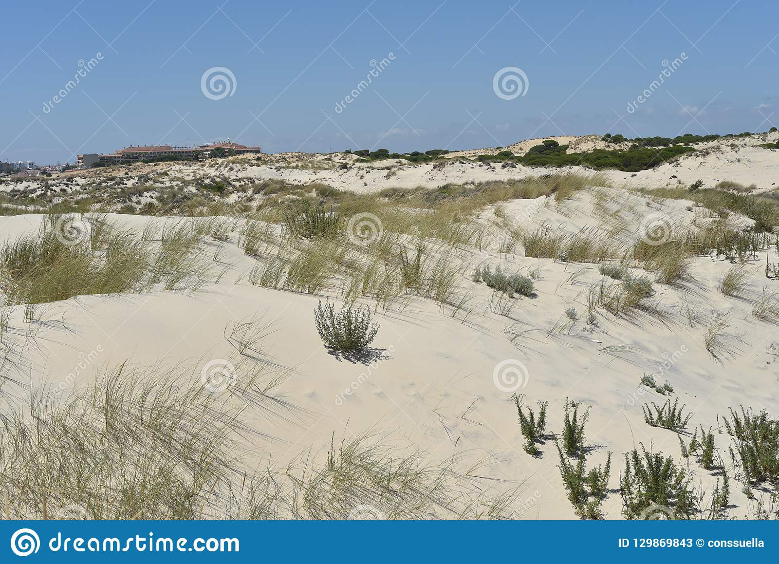 Donana National Park in Andalusia, Spain