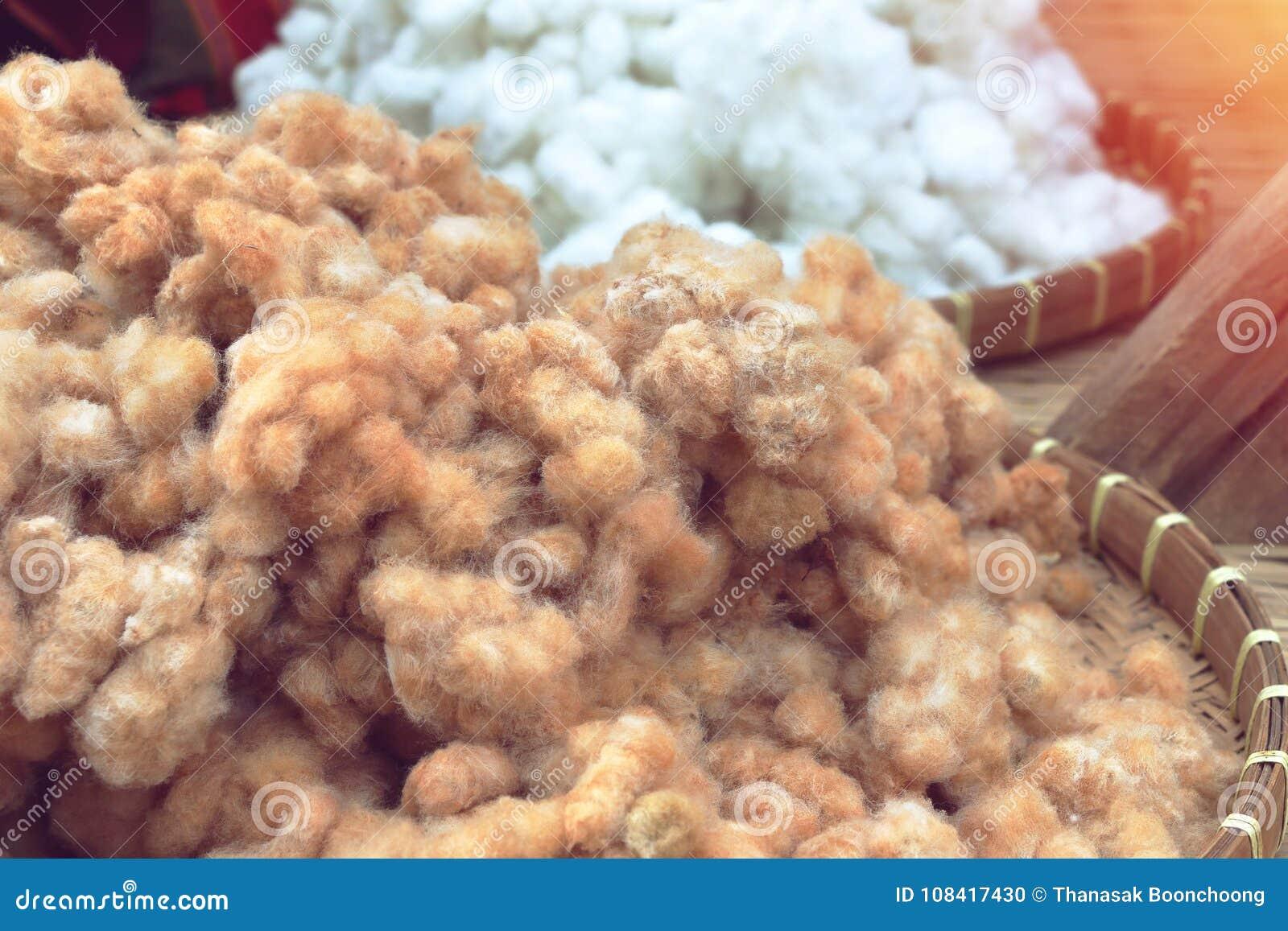 Coton dans le panier utilisé comme fibre textile