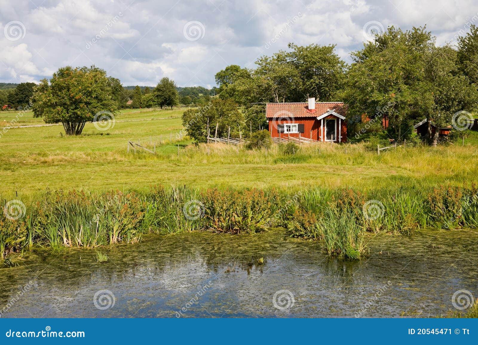 Cottage di estate