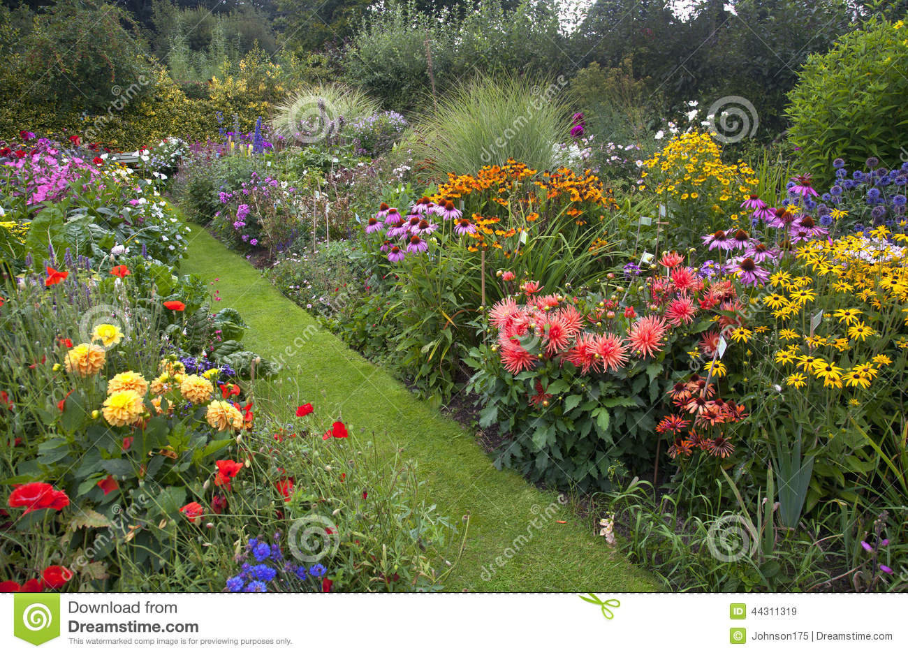 Cottage Garden Stock Image Of Beauty Blooming
