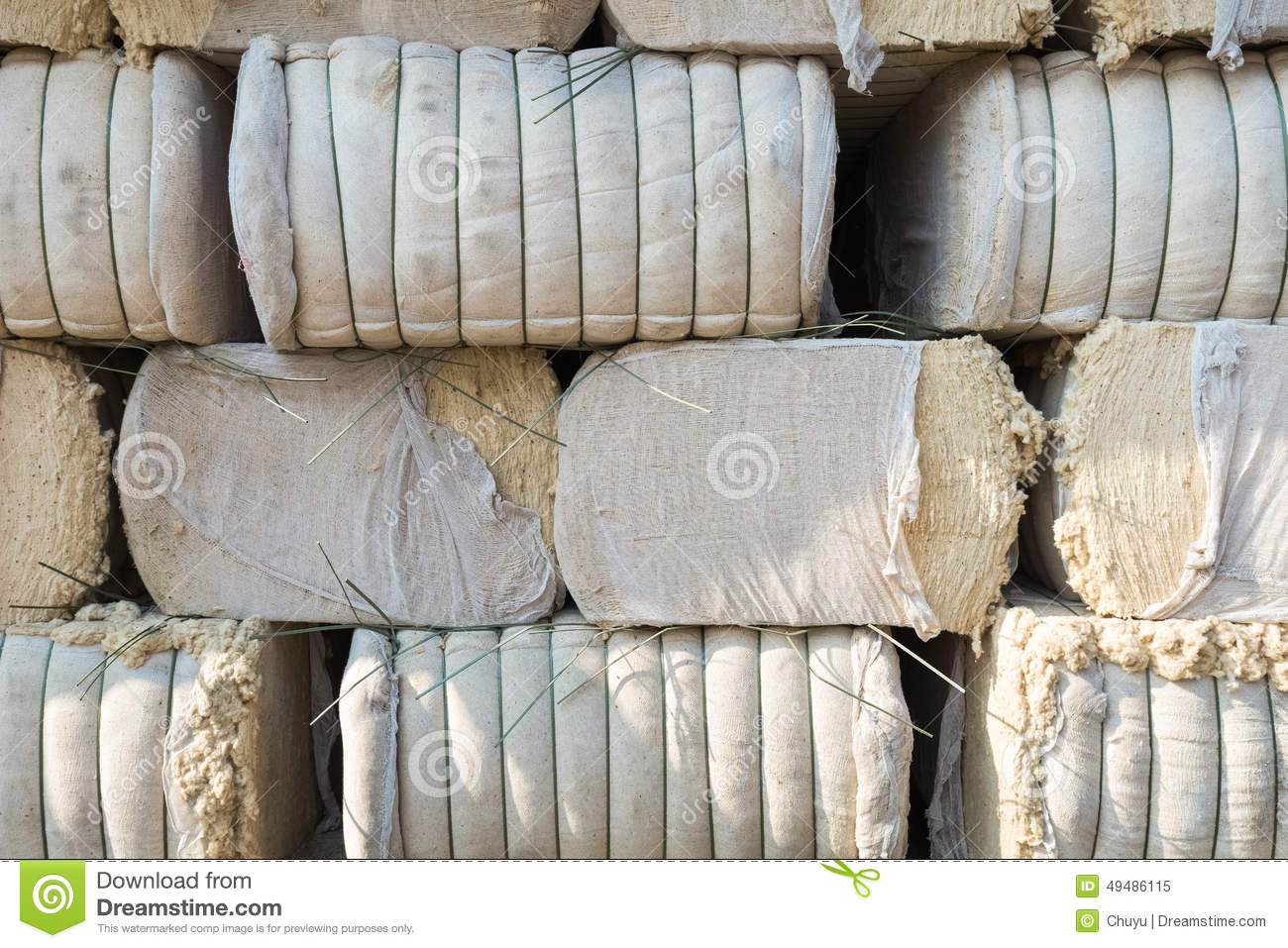 cotton paper for money Money has been made from a variety of materials over the years—from leather in  china during the han dynasty, to shells, precious metals, cotton paper, and.