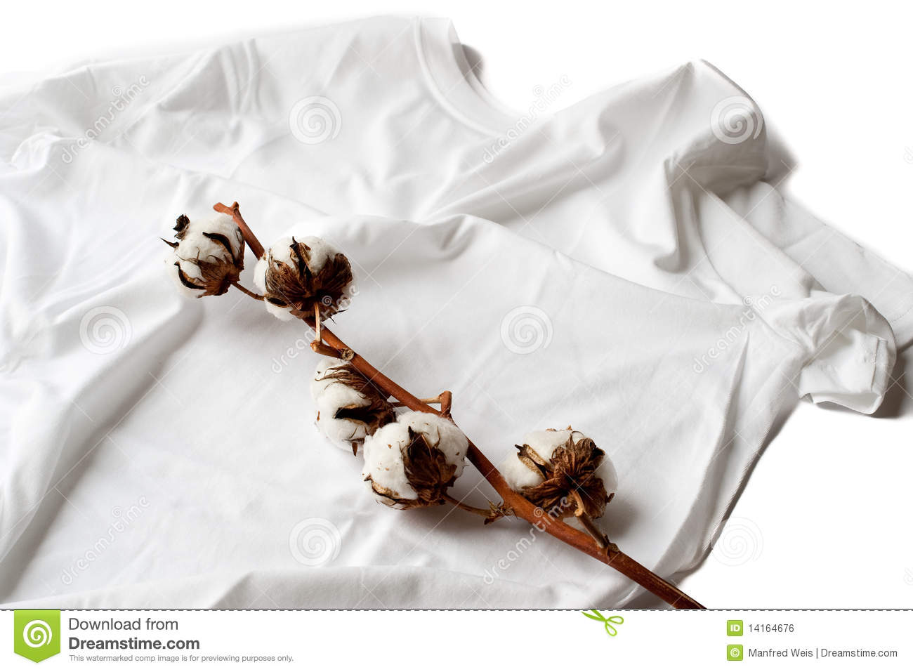 Cotton on definition is - to begin to understand something: to catch on —often + to. cotton on. cotton picker. cotton-picking. cotton powder. Statistics for cotton on. Look-up Popularity. Subscribe to America's largest dictionary and get thousands more definitions and advanced search—ad free! Merriam-Webster unabridged. Words at.