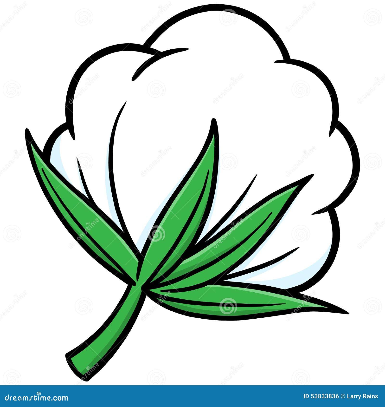 Cotton Stock Vector - Image: 53833836