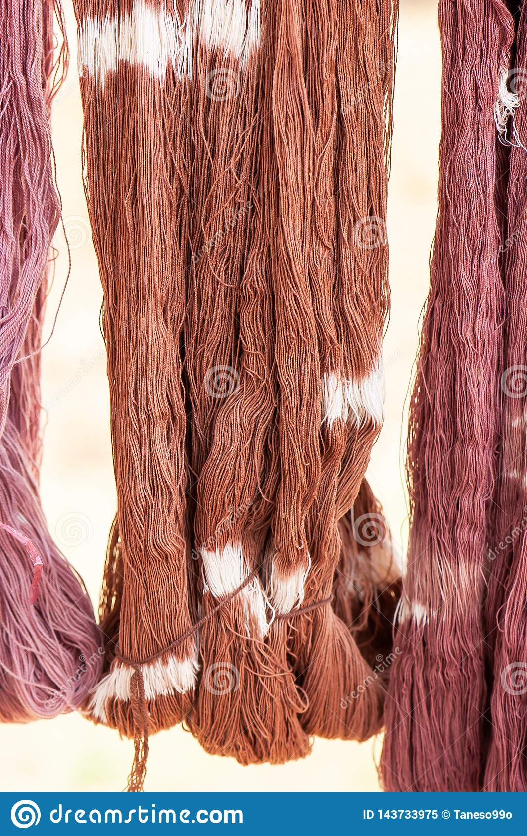 Cotton yarn dyeing with the natural dyes hanging in sunlight for drying. Local handmade products of Sakon Nakhon Province,