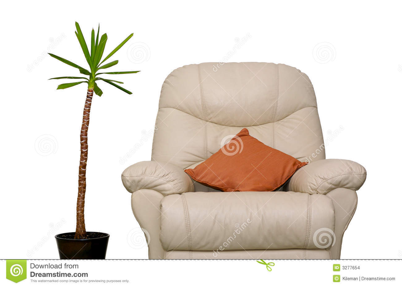 Couch and plant