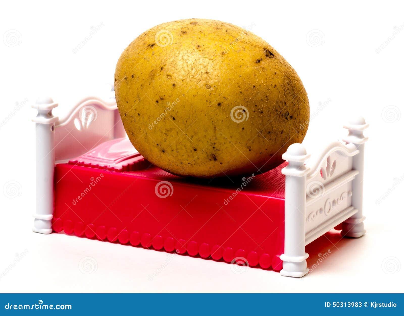 Couch Potato Royalty Free Illustration Cartoondealer Com