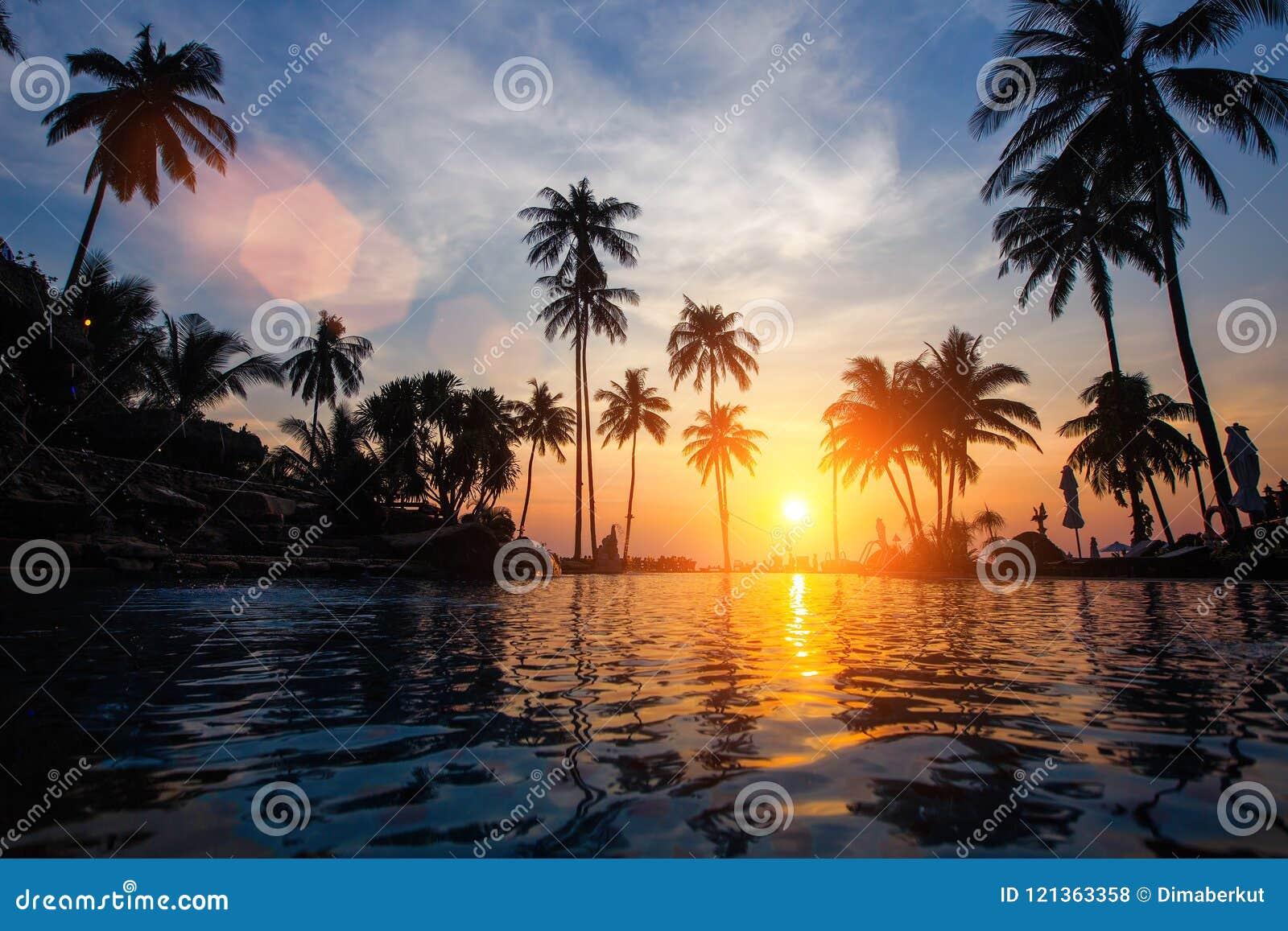 Coucher du soleil étonnant sur une plage tropicale de mer Voyage