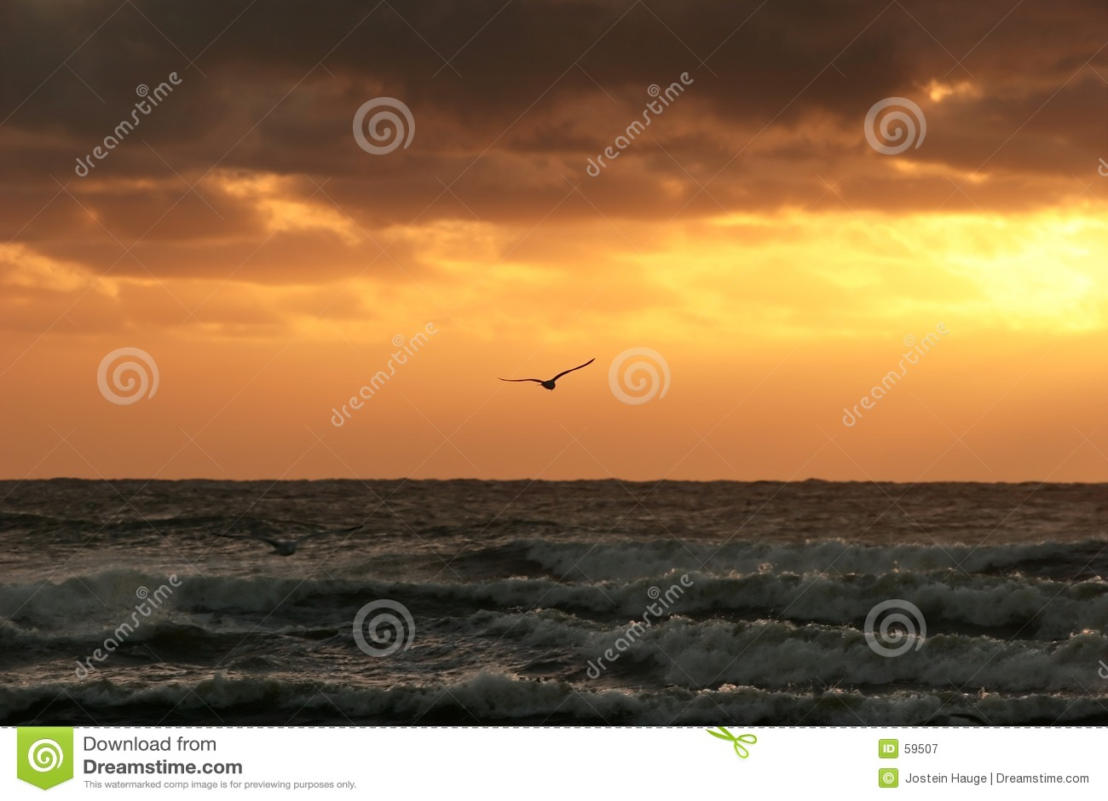 Download Coucher du soleil image stock. Image du sunset, immensité - 59507