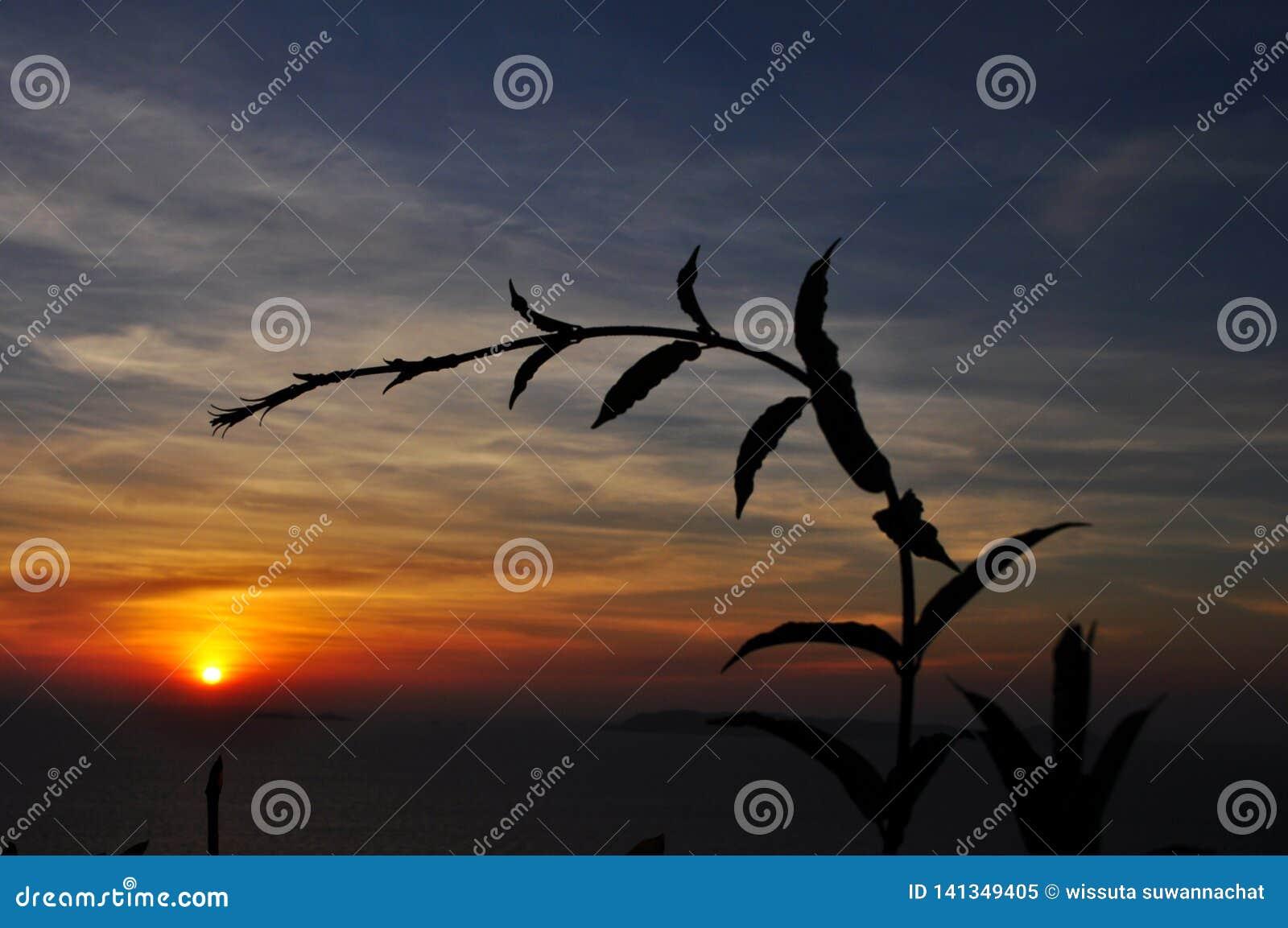 Coucher du soleil au-dessus de la mer