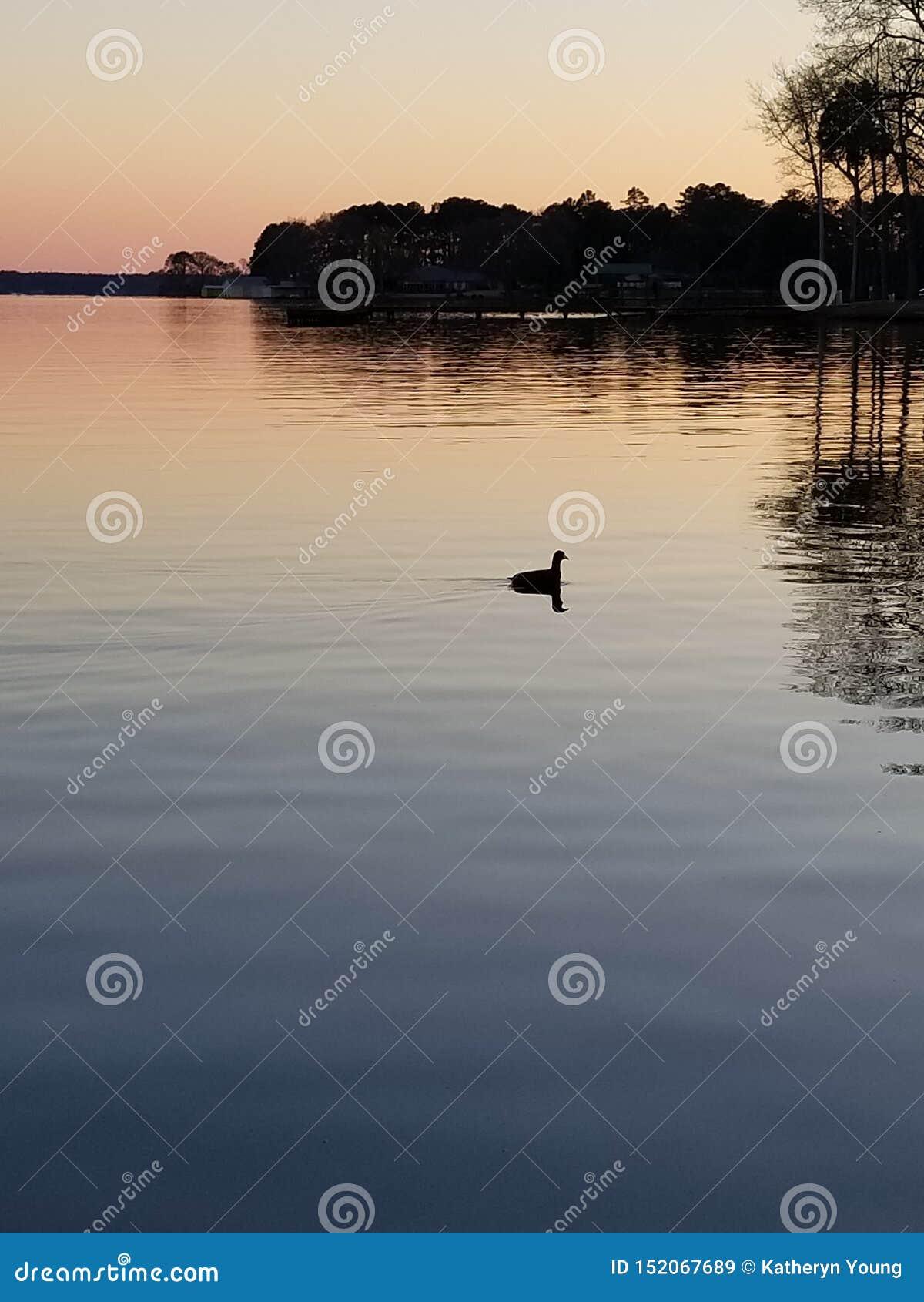 Coucher du soleil au lac