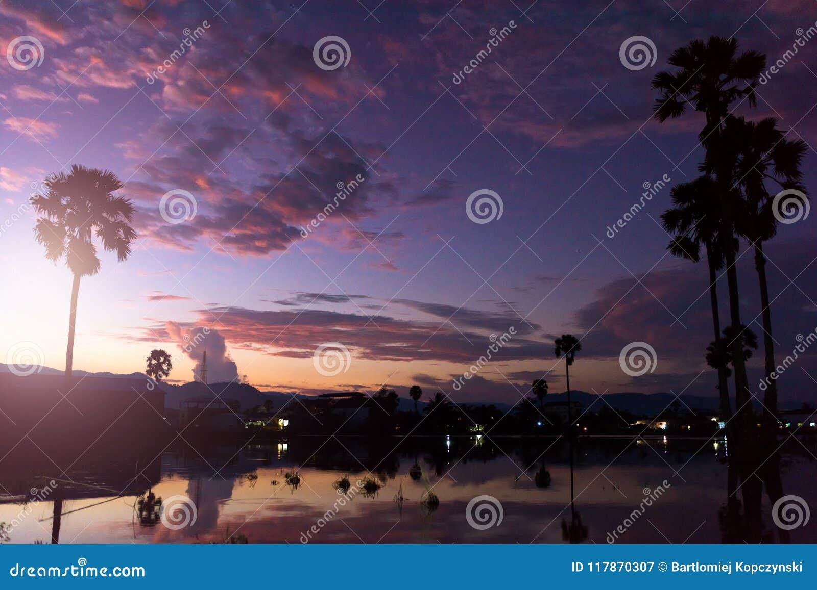 Coucher du soleil avec le petits étang et palmiers