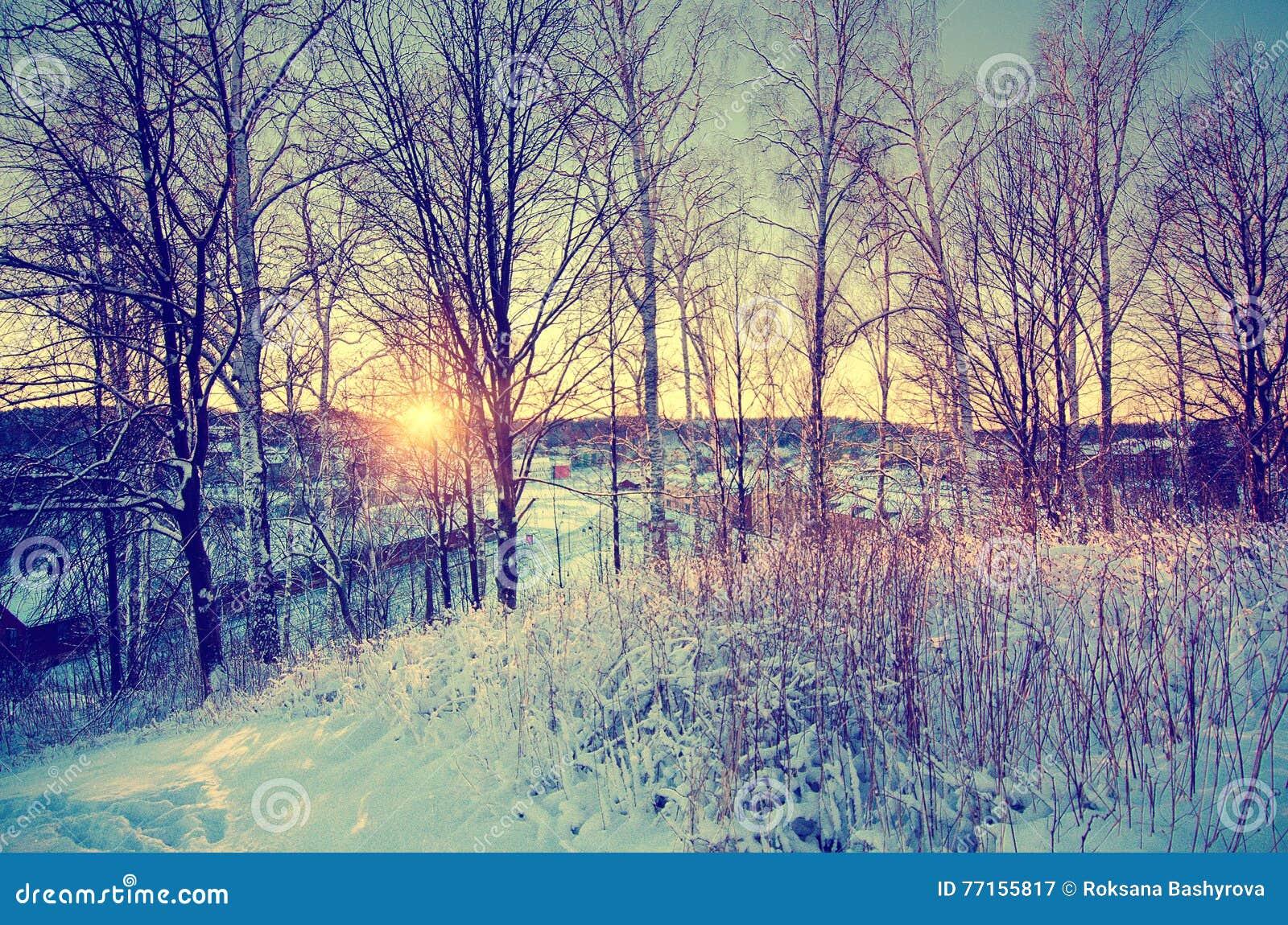 Coucher du soleil d hiver de colline