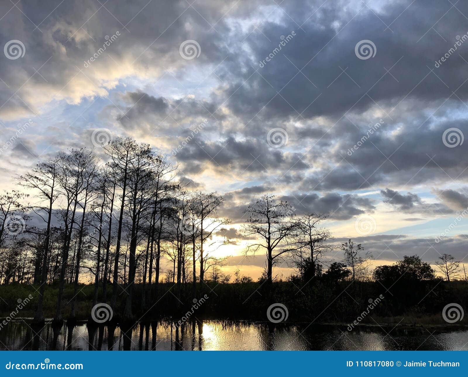 Coucher du soleil dans le marais