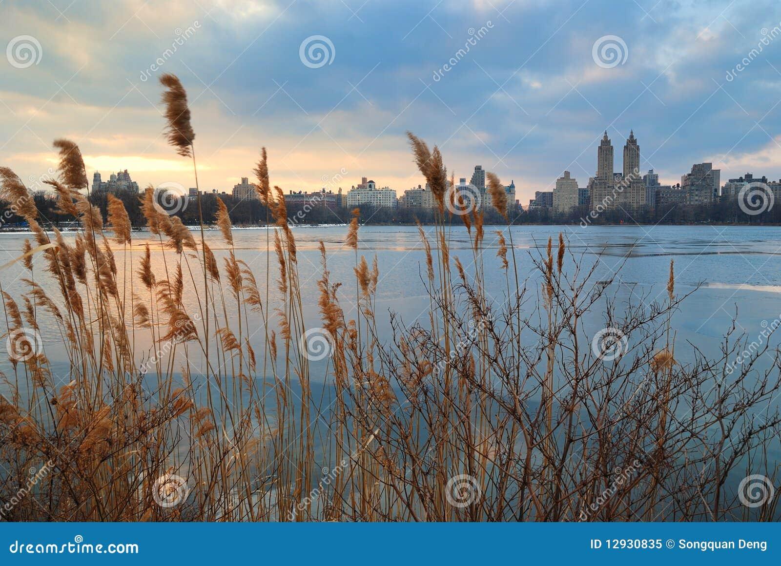 Coucher du soleil de central park new york city photo - Coucher du soleil new york ...
