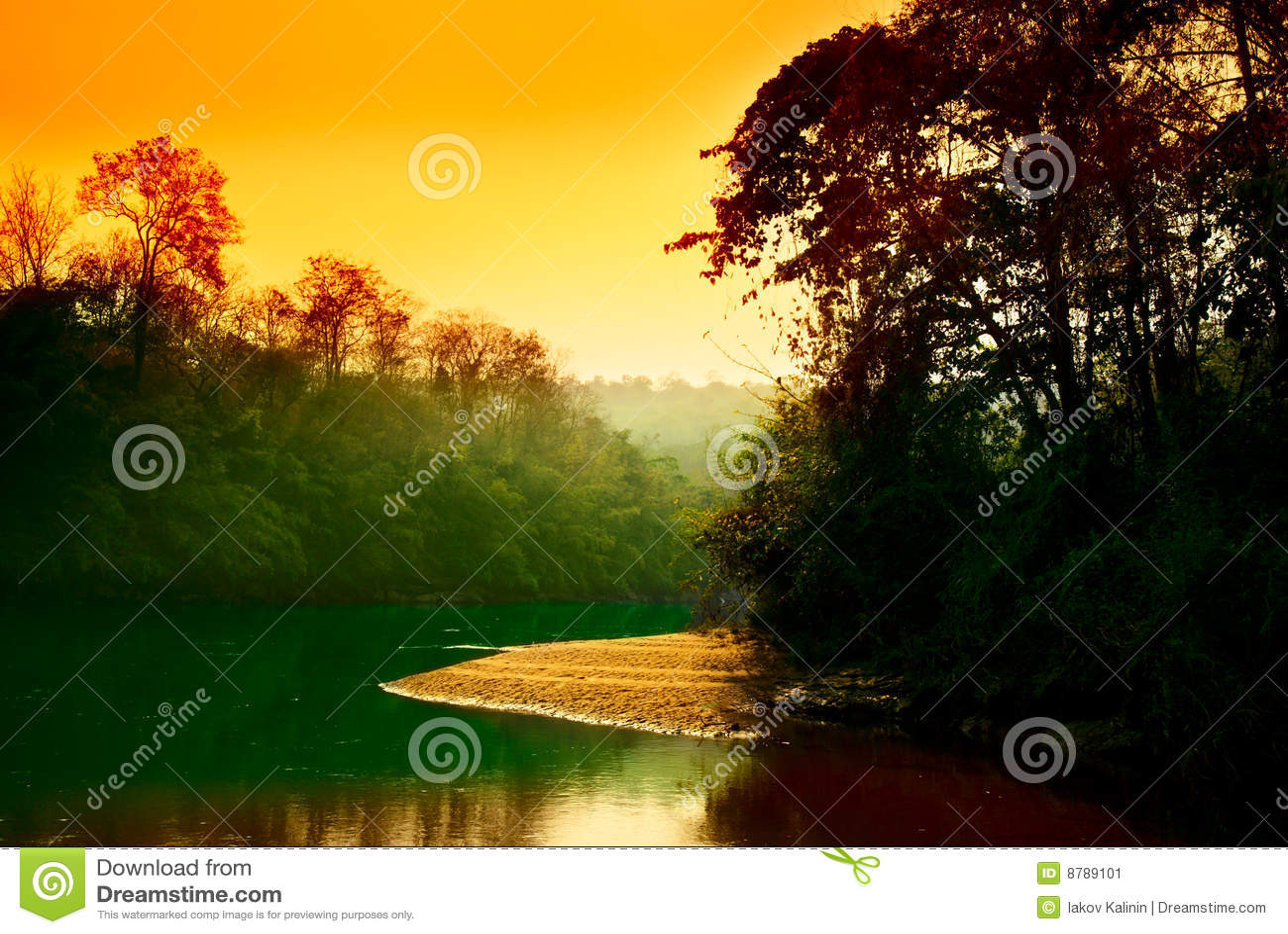 Coucher du soleil de jungle