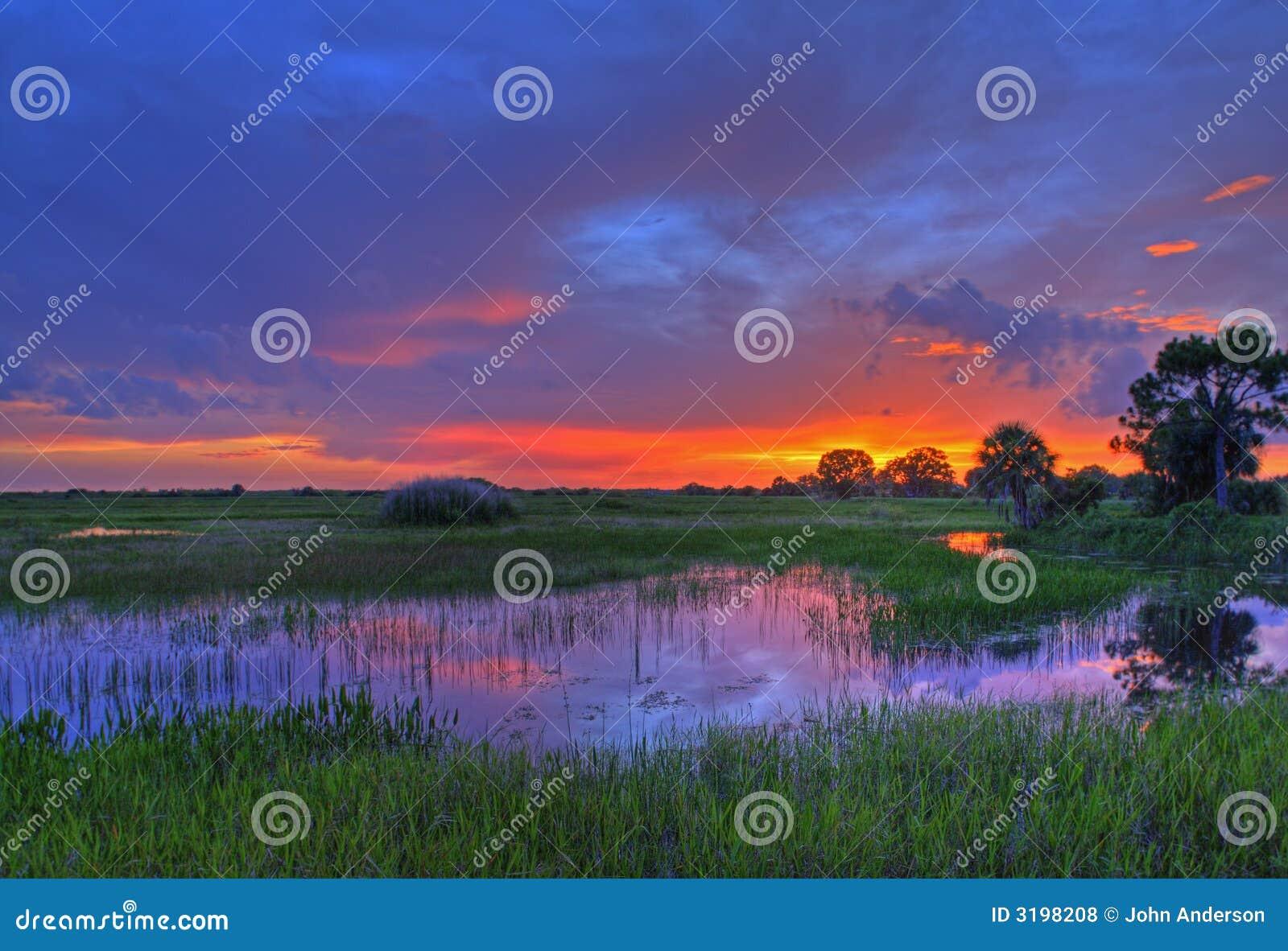 Coucher du soleil de marais