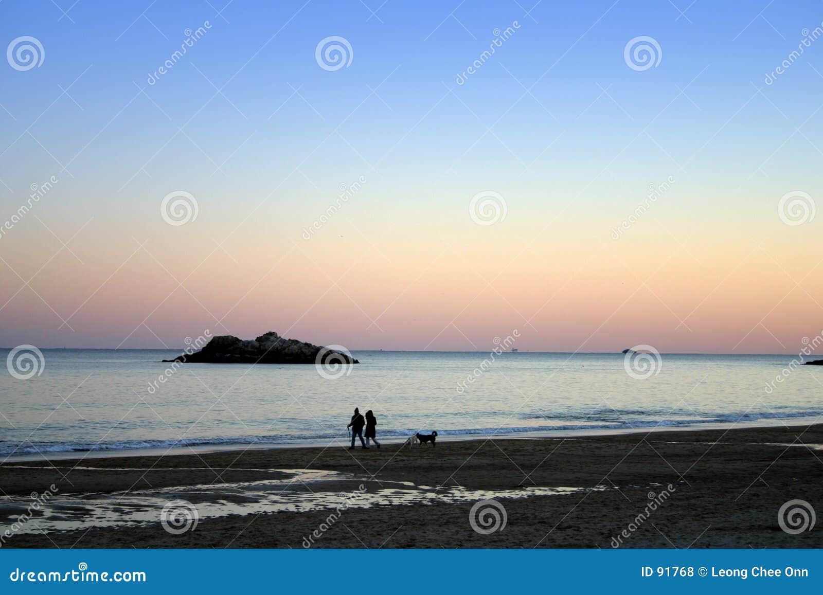 Coucher du soleil de plage de chant