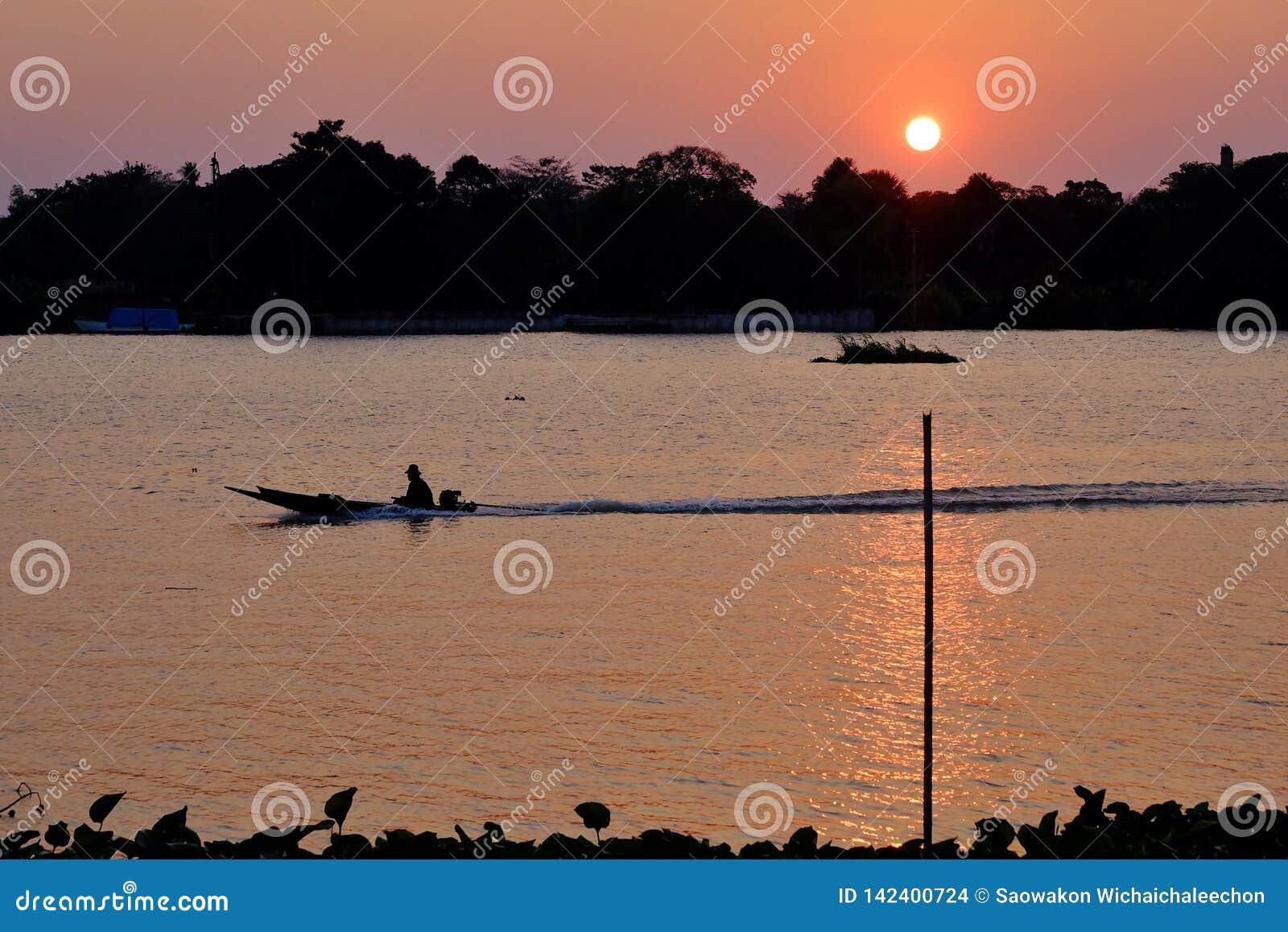Coucher du soleil de silhouette avec un aviron femelle un petit bateau en rivière
