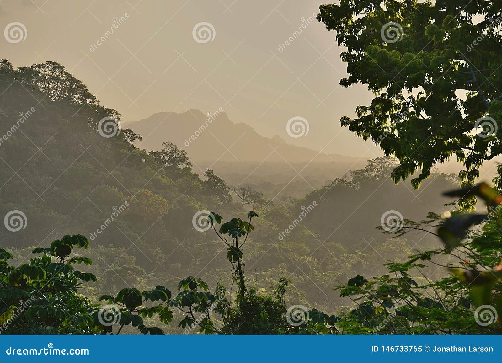 Coucher du soleil flou de Belize