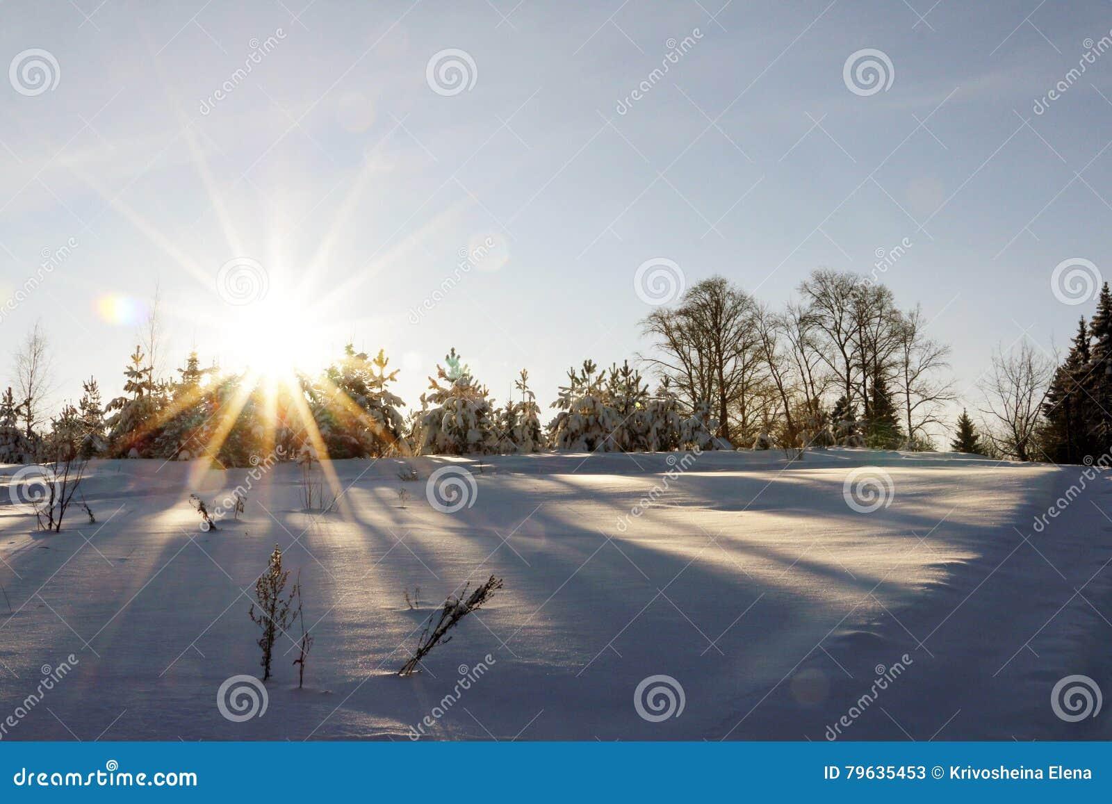 Coucher du soleil gentil dans un jour froid