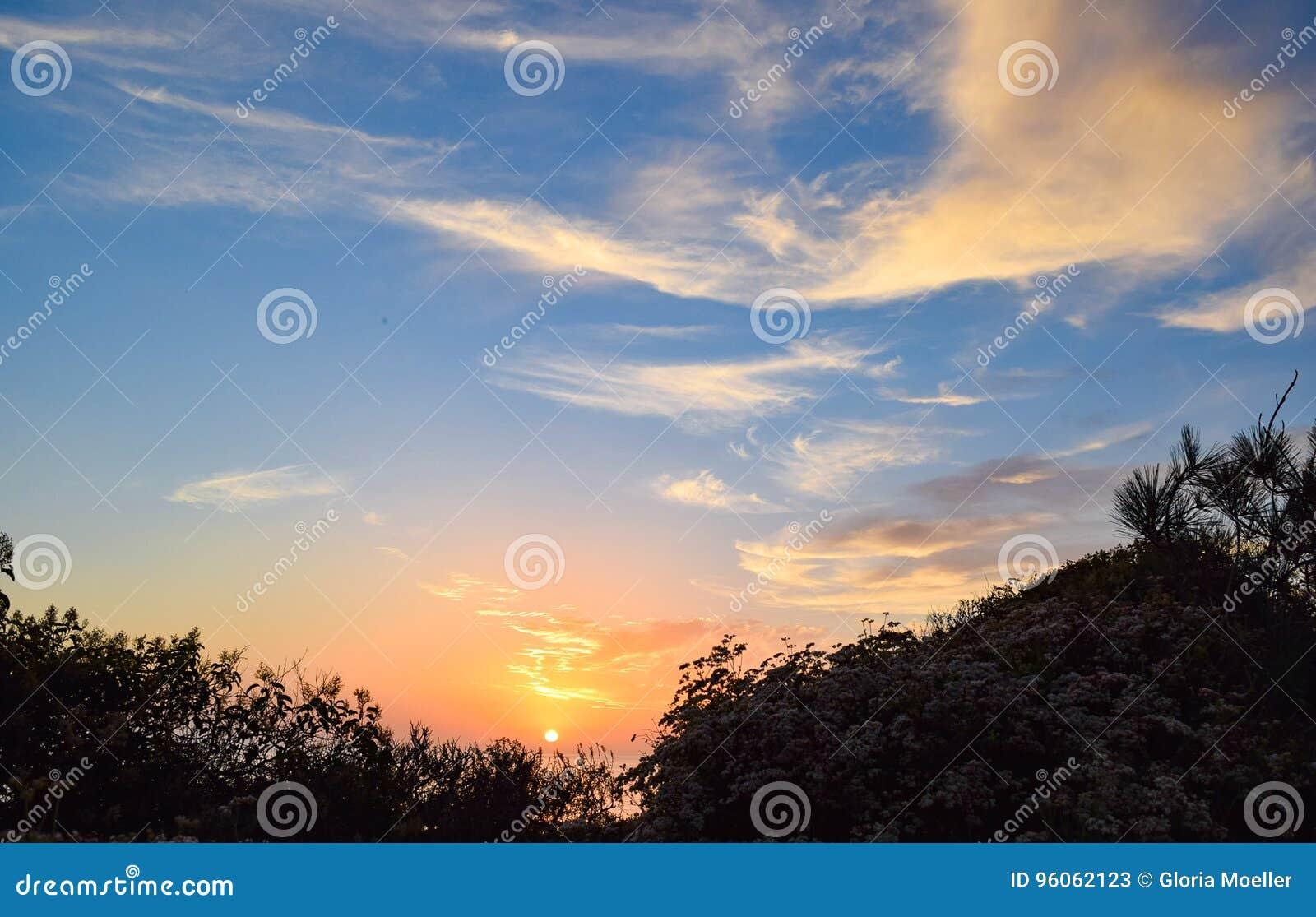 Coucher du soleil par la brosse chez Torrey Pines State Reserve à San Diego