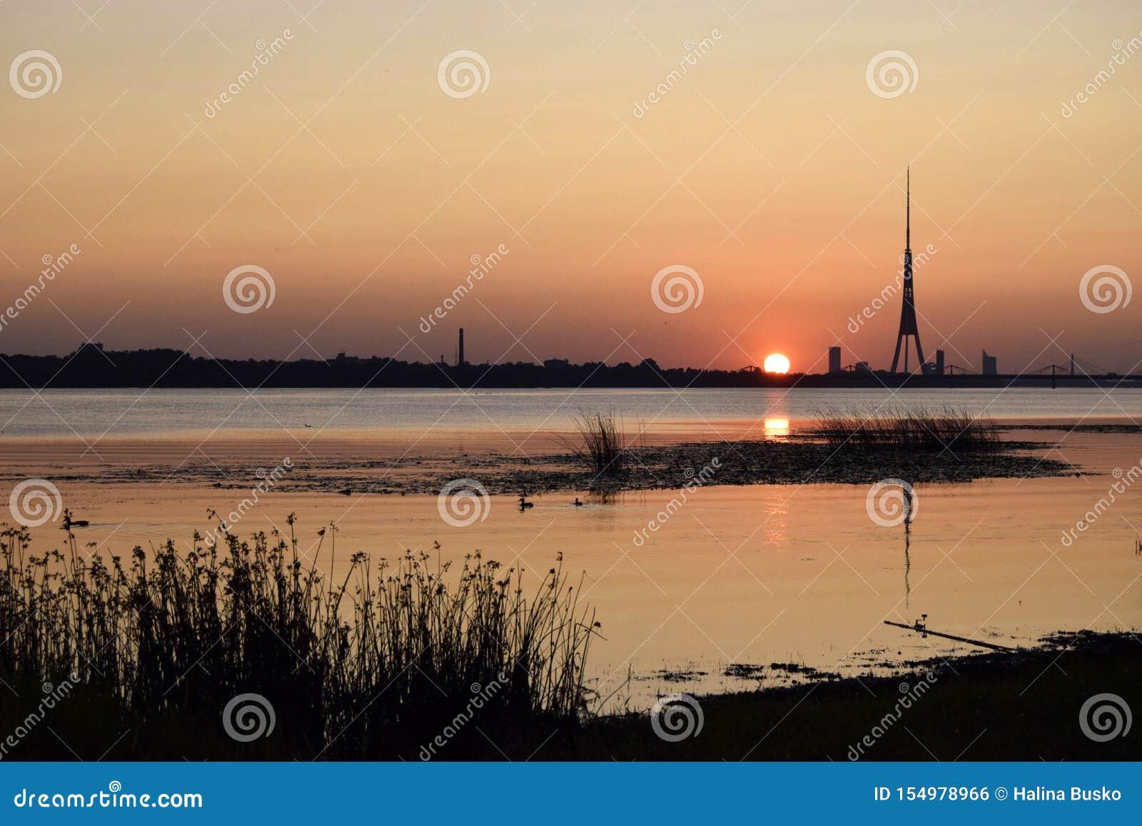 Coucher du soleil, rivière occidentale de Davgava de rivière de Dvina, été, soirée Paysage naturel des Pays baltes