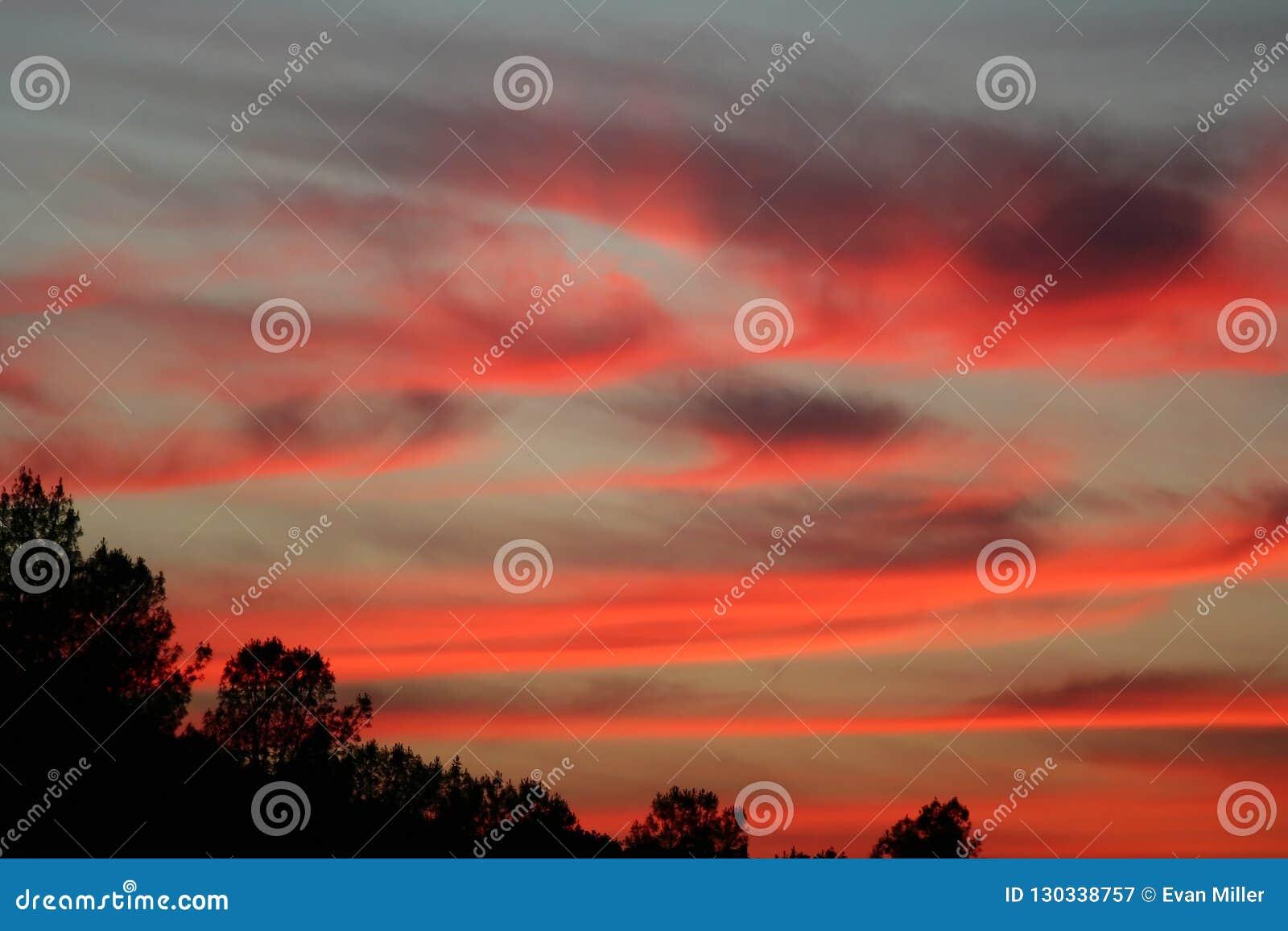 Coucher du soleil rose lumineux avec des cirrus