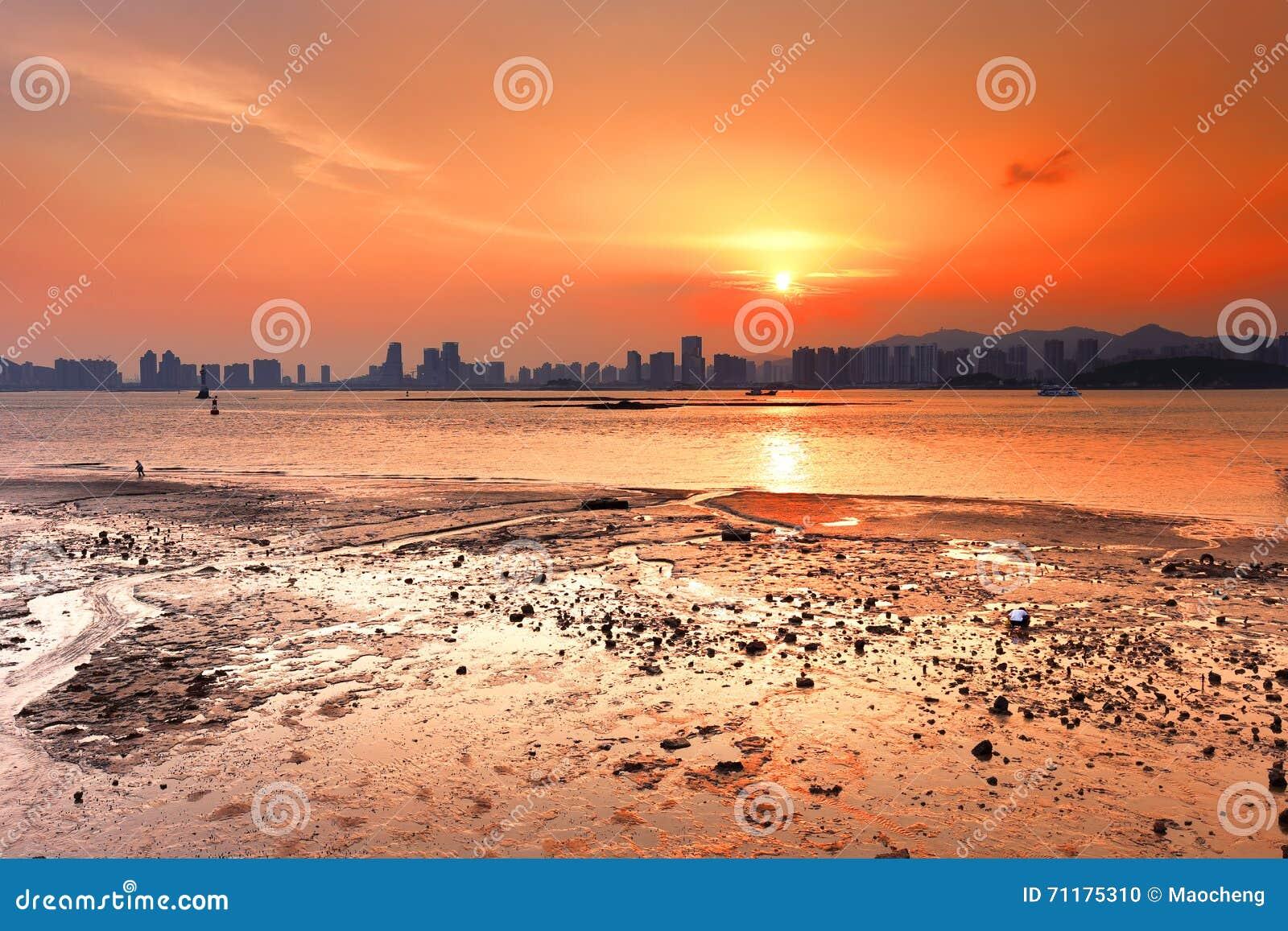 Coucher du soleil splendide de mudflat