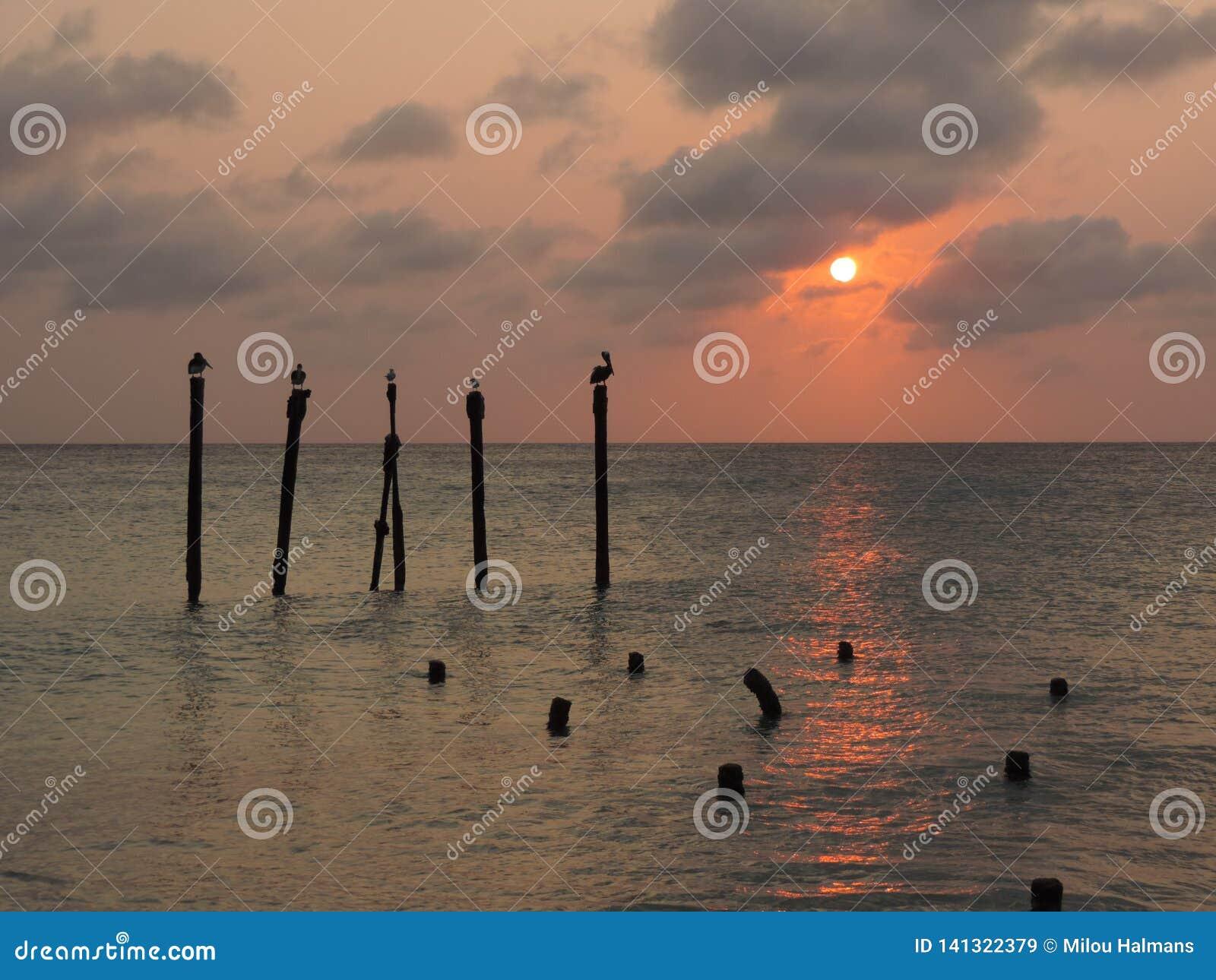 Coucher du soleil sur la plage de Druif, île d Aruba en mer des Caraïbes