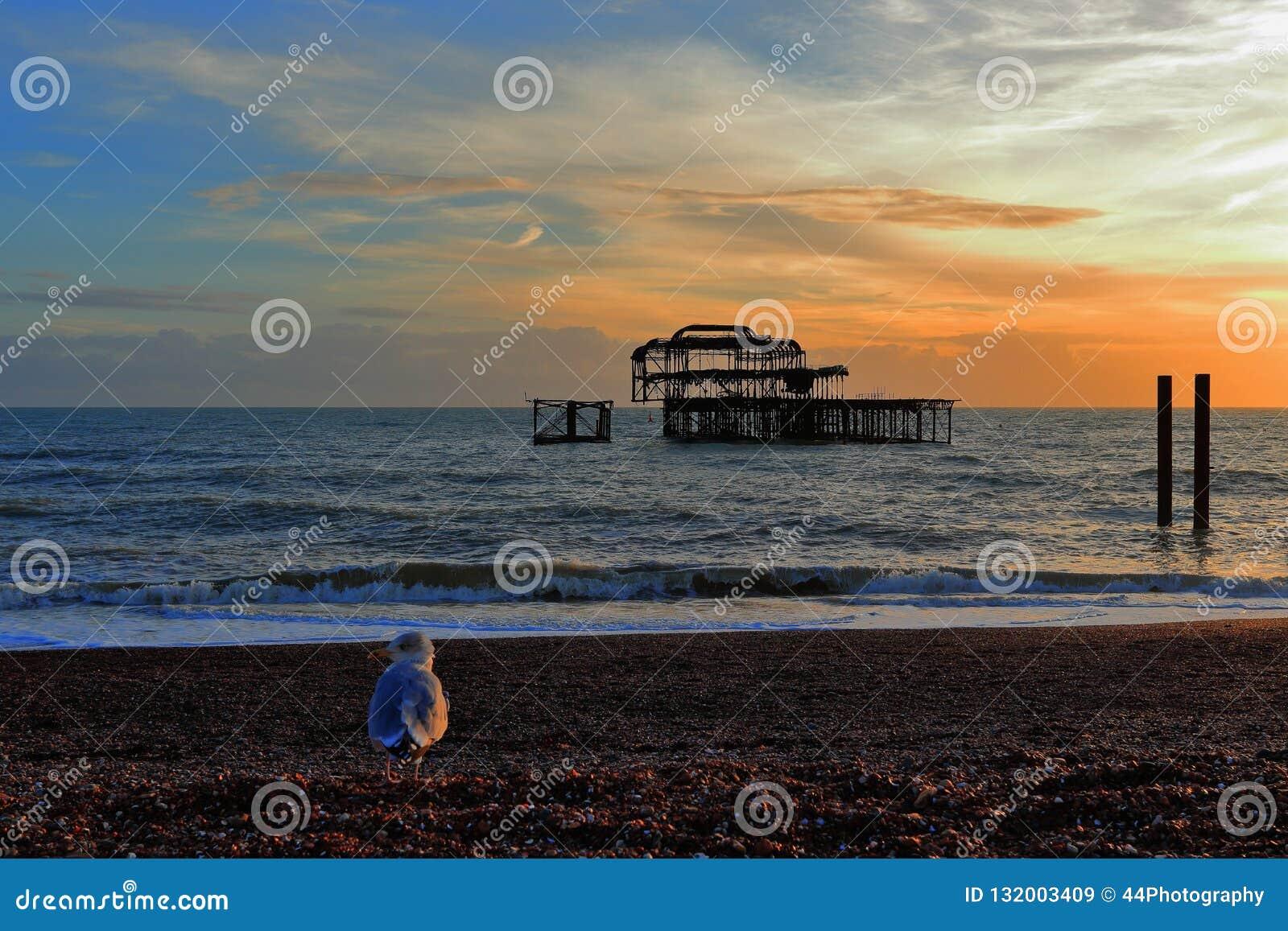 Coucher du soleil sur un Pebble Beach à Brighton, à Brighton et Hove, East Sussex, Royaume-Uni