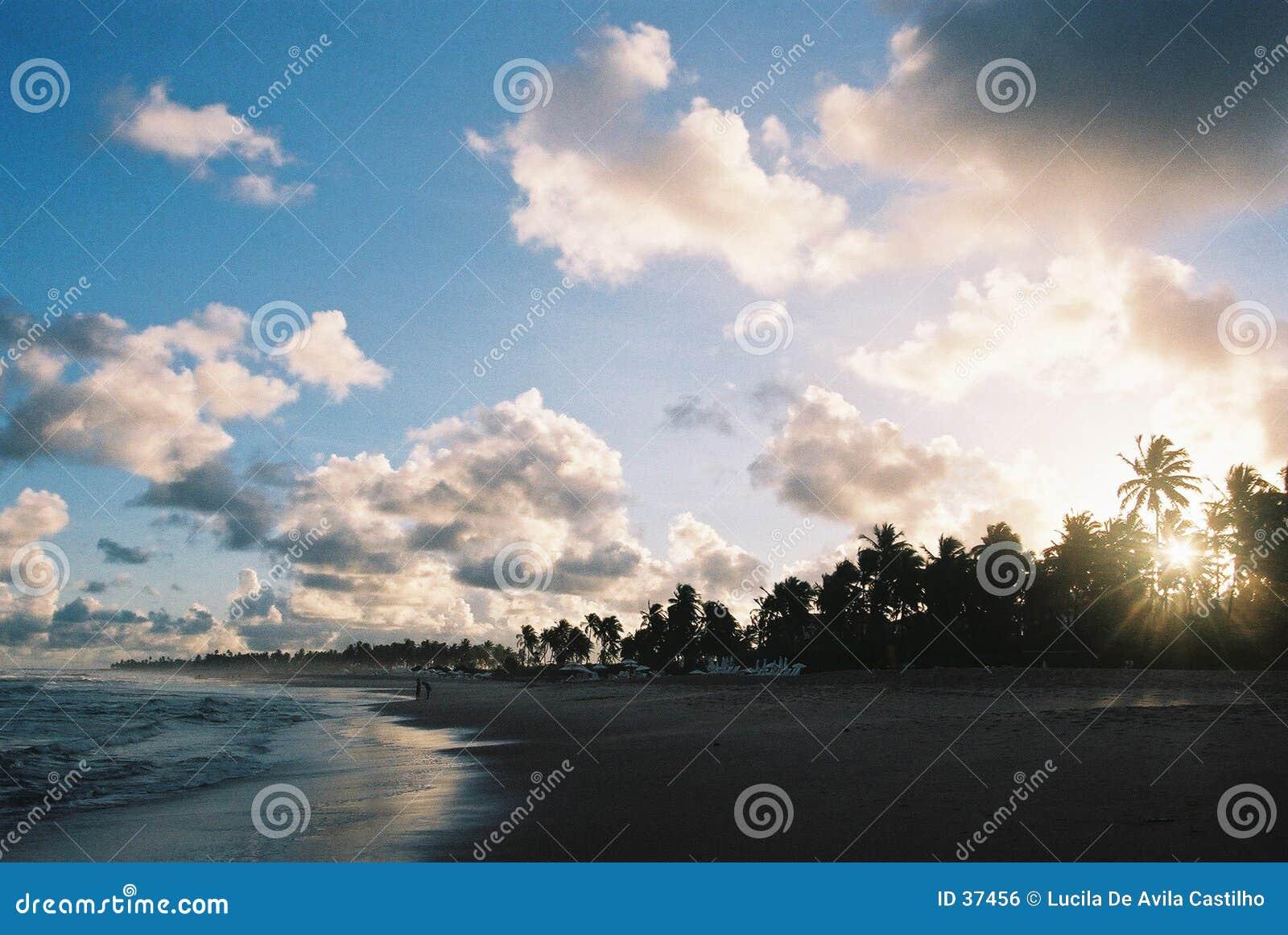 Coucher du soleil tropical - texture visible de film.
