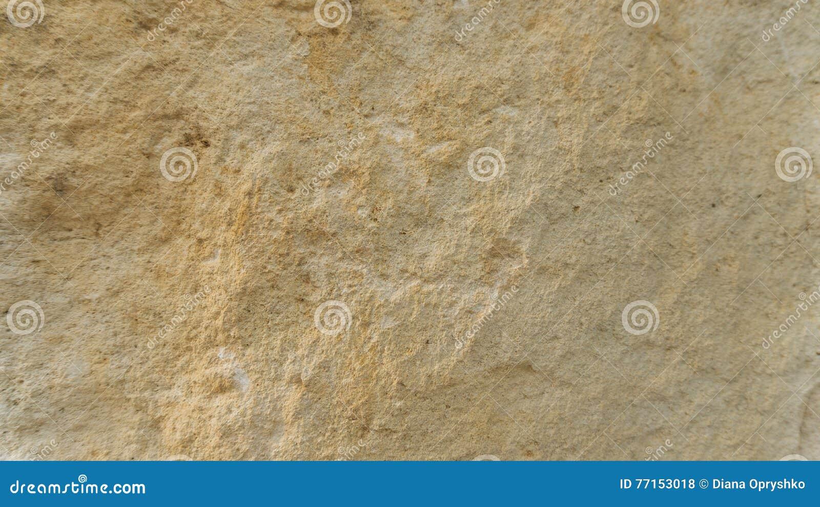 Couches de roche de dolomite de Diplopora Stylo pour l échelle