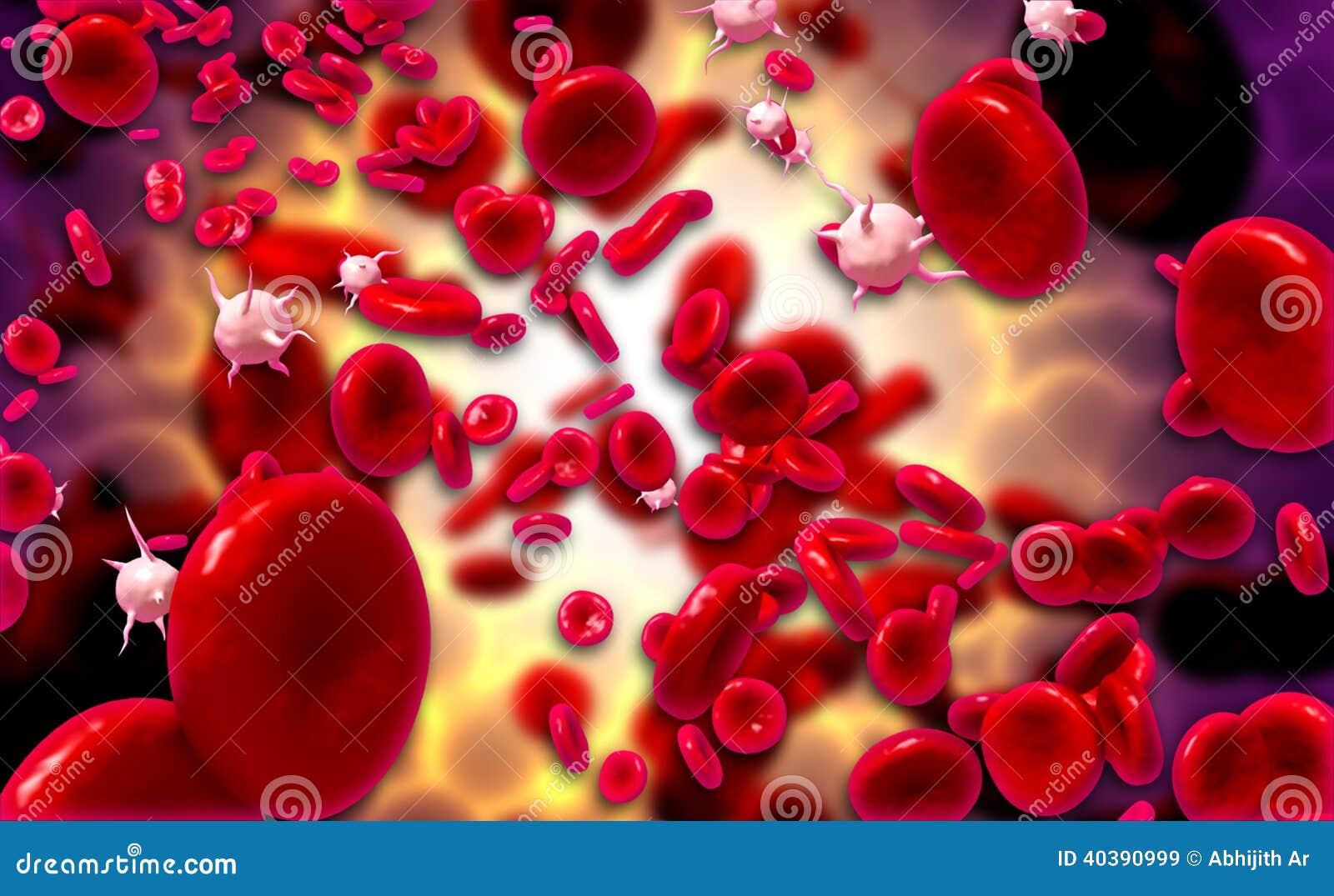 Couler des globules sanguins