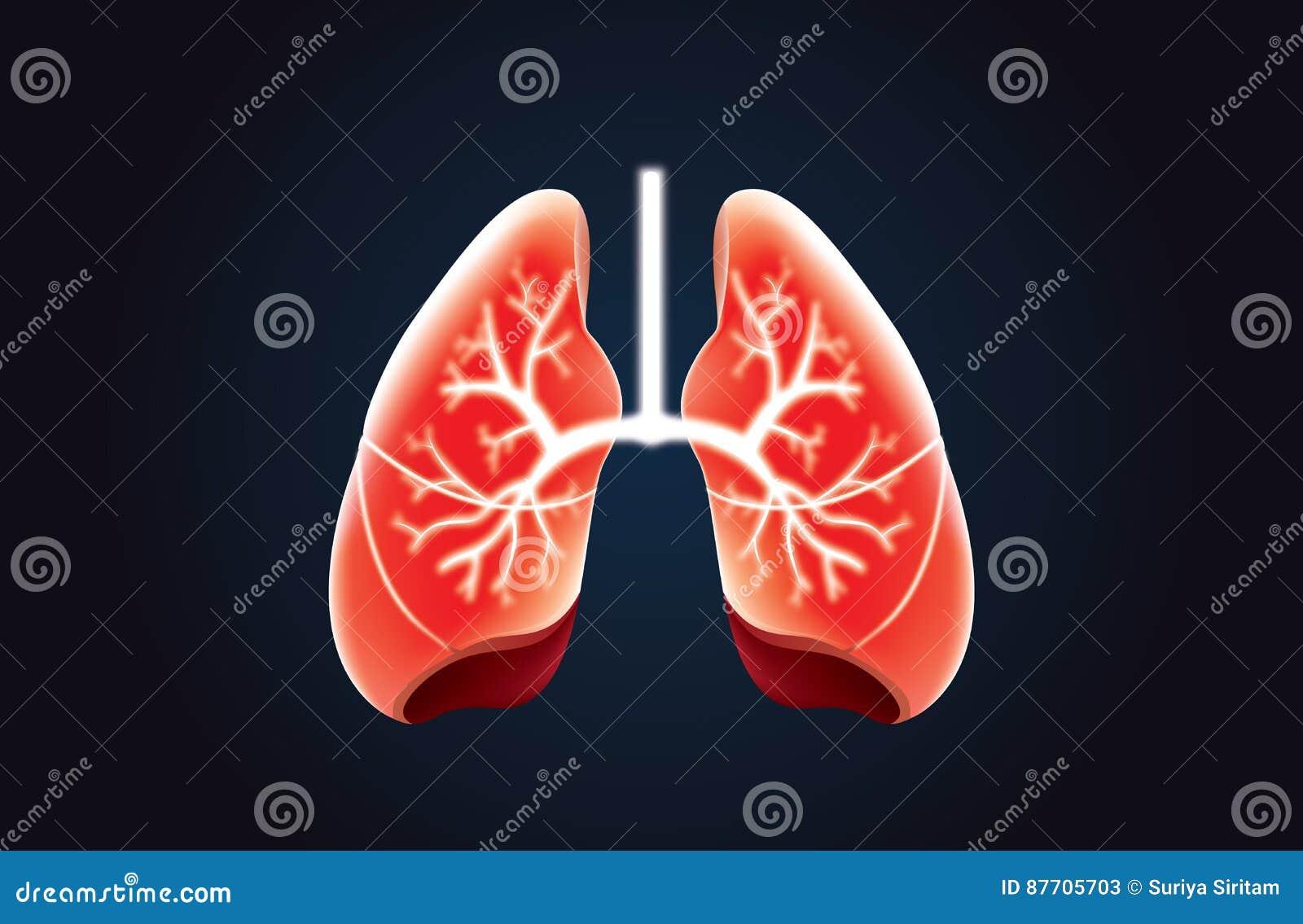 Couleur rouge de vecteur de poumon sur le noir