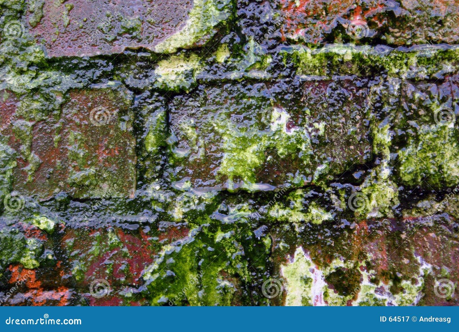 Download Couleurs 2 D'affaiblissement Image stock - Image du beauté, rouge: 64517