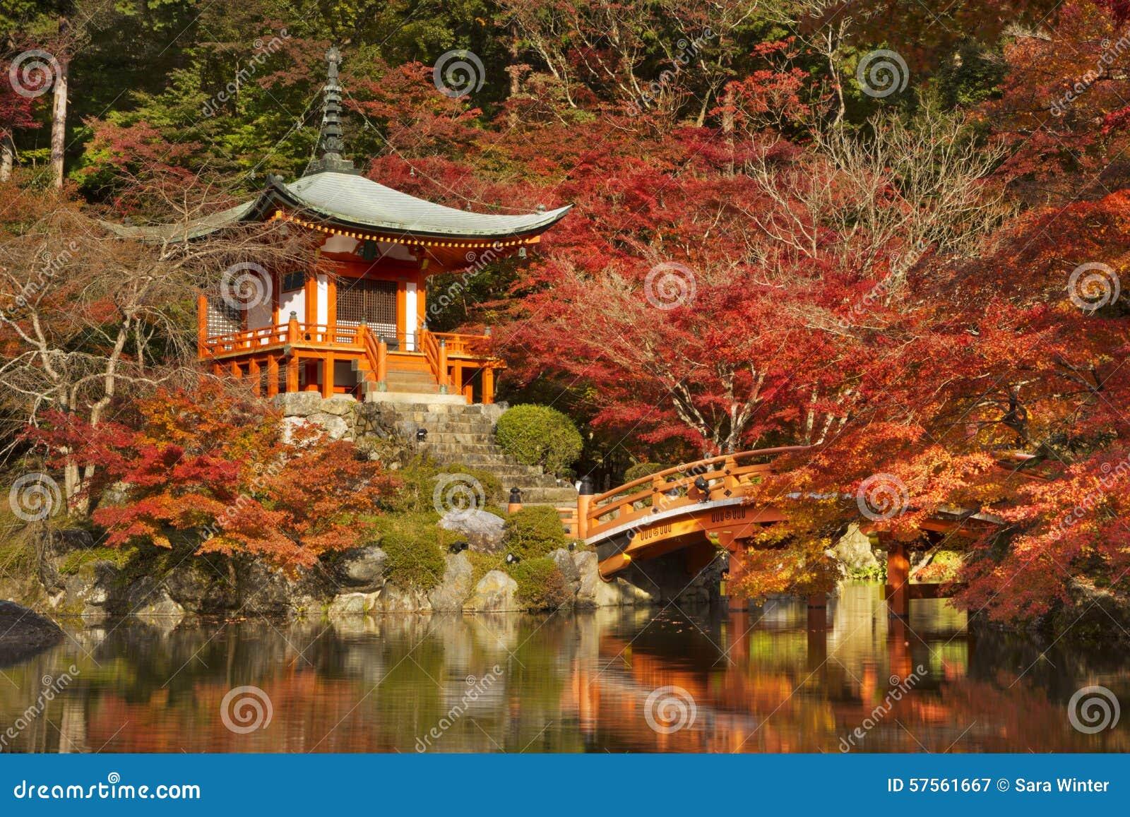 Couleurs d automne au temple de Daigo-JI à Kyoto, Japon