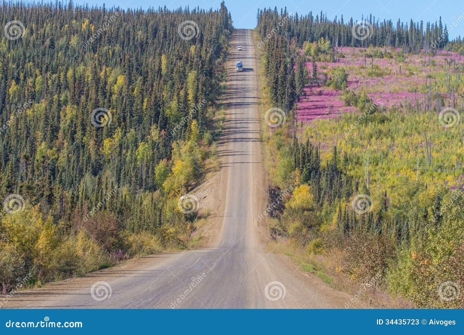 Couleurs de chute le long de route de Dalton à la baie de Prudhoe en Alaska