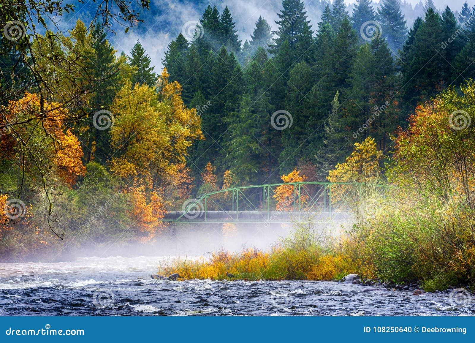 Couleurs de chute le long du confluent de deux rivières