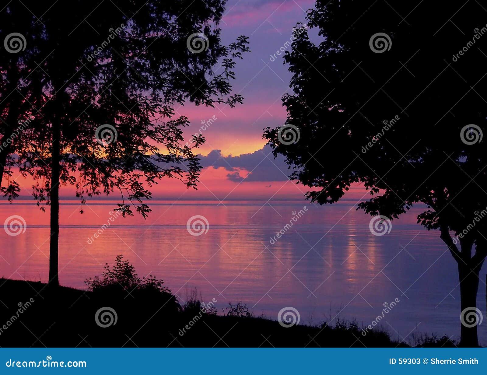 Download Couleurs de soirée image stock. Image du paisible, herbe - 59303